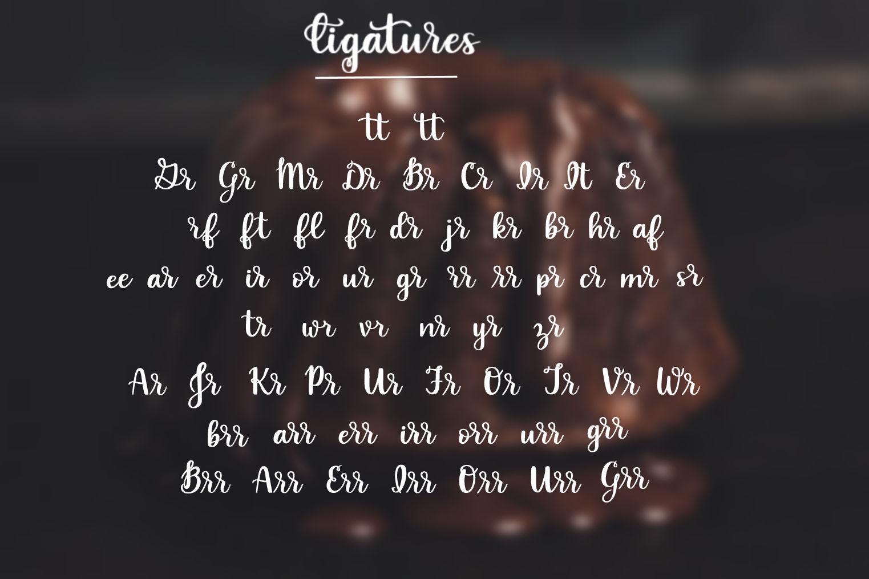 4 Font Mini Bundle - Volume 1 example image 14