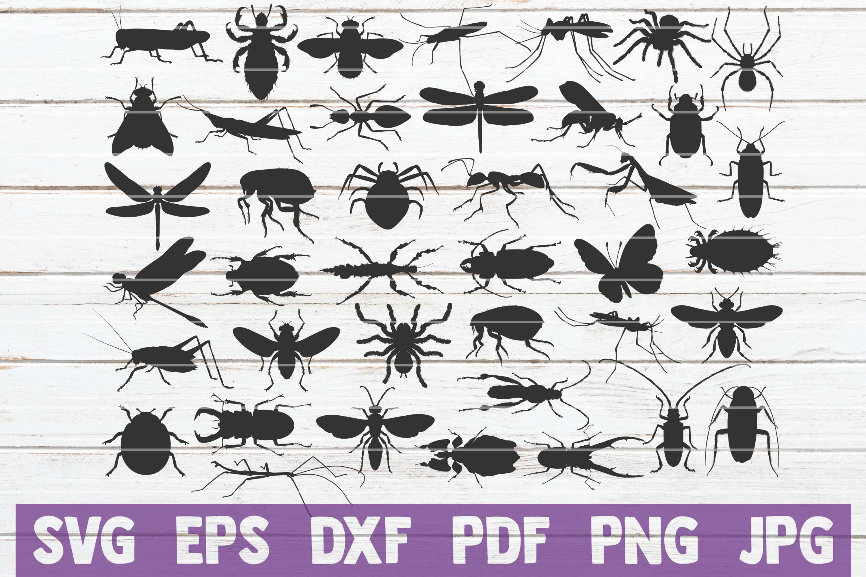 Insects SVG Cut Files | commercial use example image 1