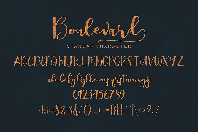 Boulevard Script Font example image 7