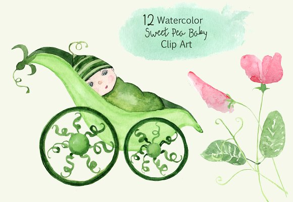 12 Watercolor Sweet Pea Baby ClipArt example image 1