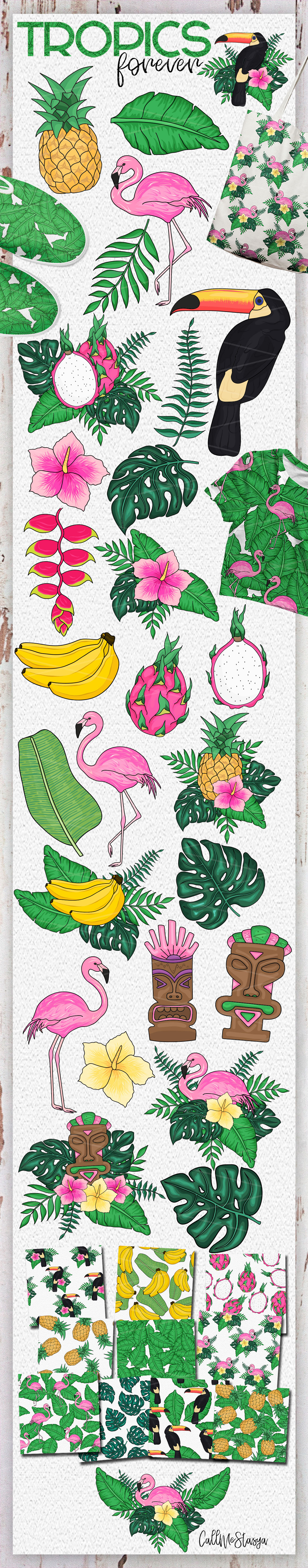 Tropics forever! Vector set example image 7