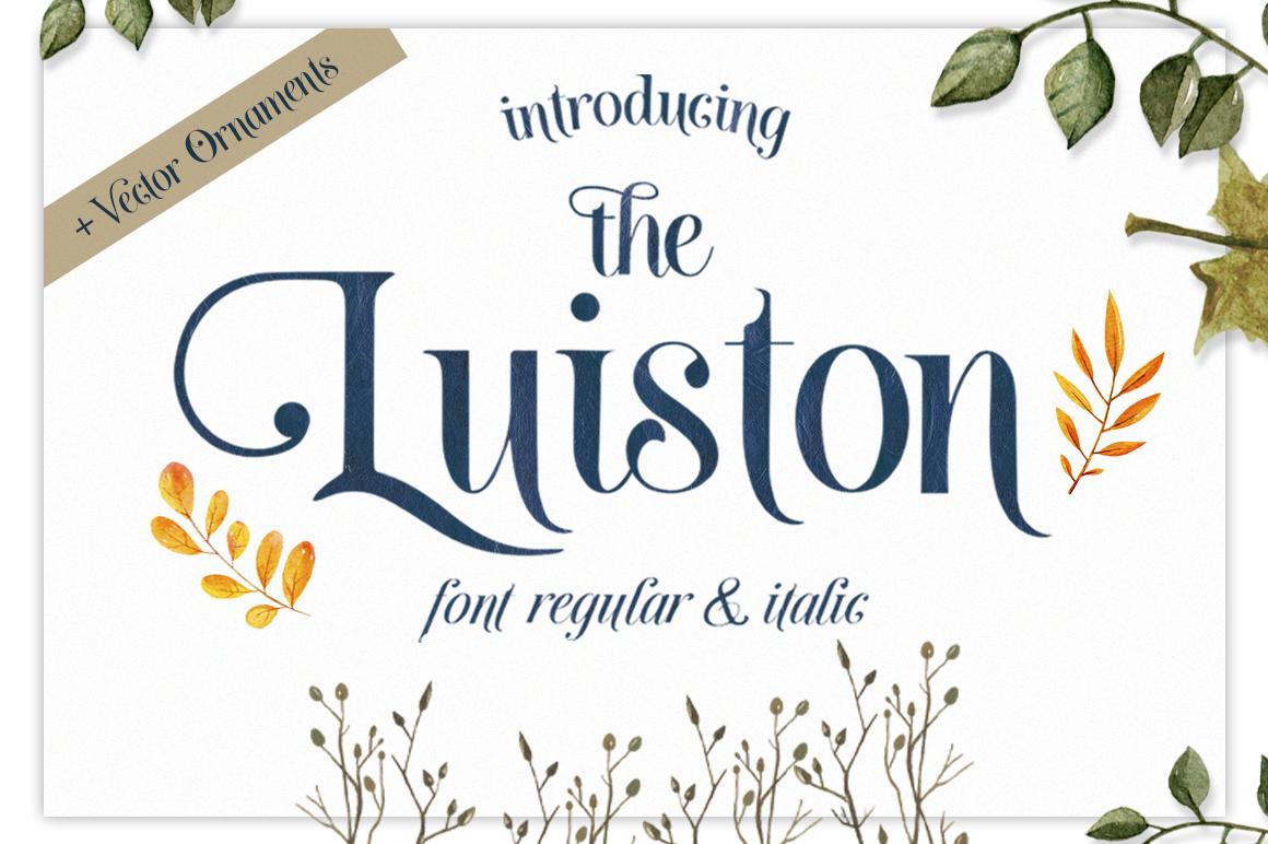 The Luiston San Serif example image 13
