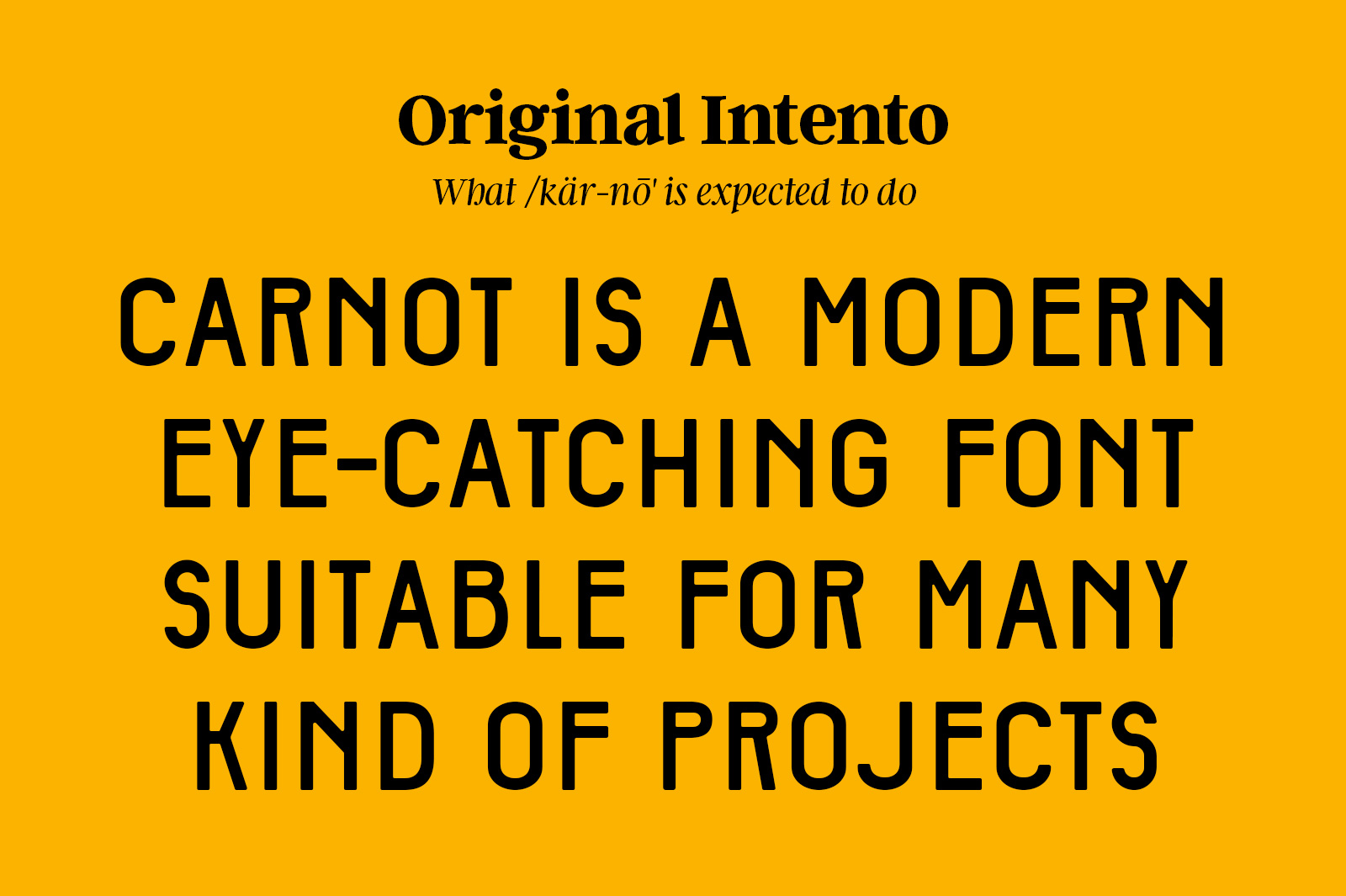 Carnot Typeface example image 6
