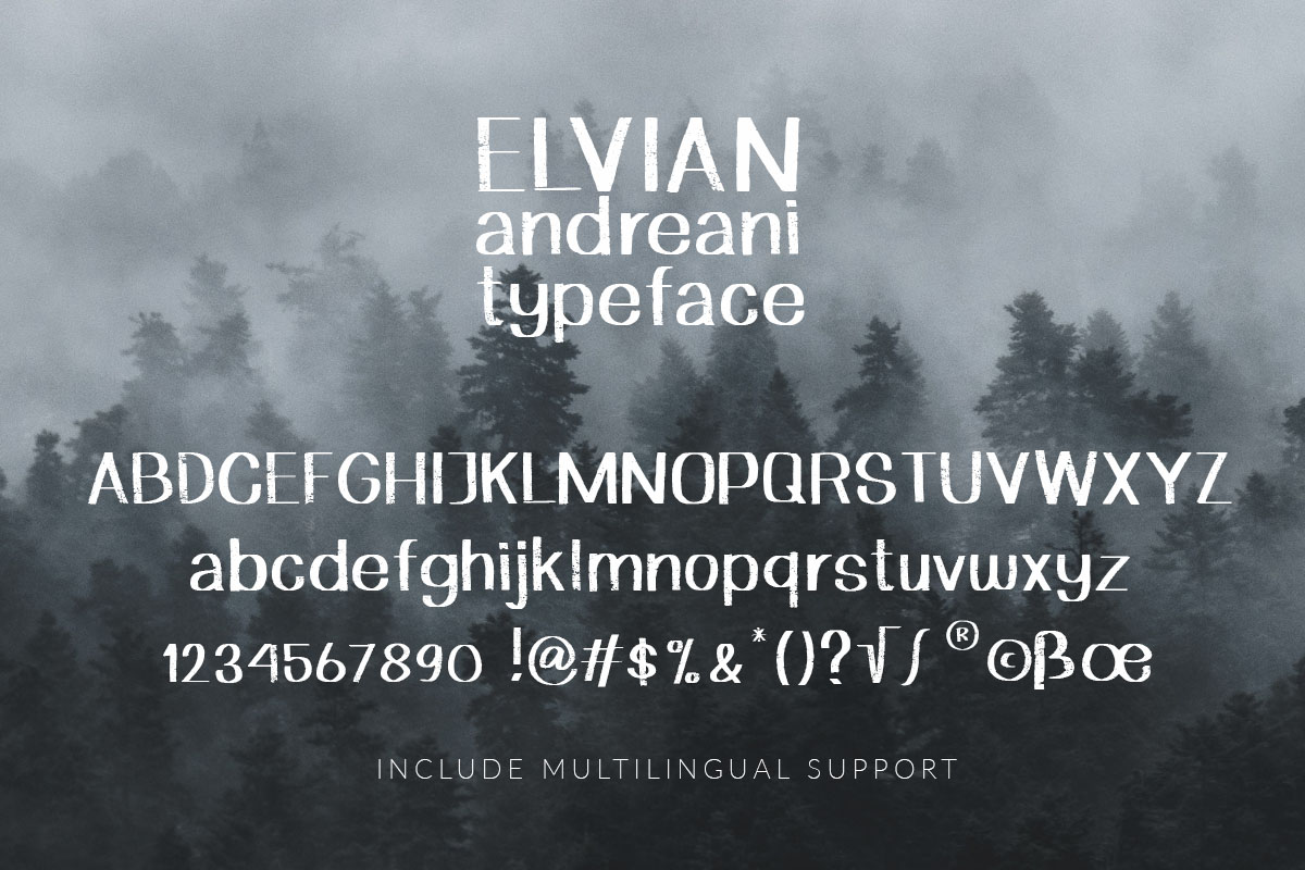 Elvian Andreani example image 5