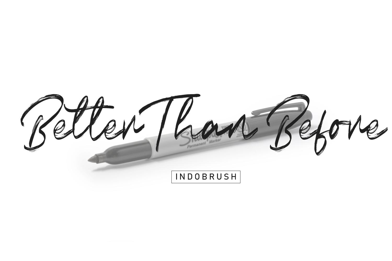 Indobrush Signature Brush example image 7