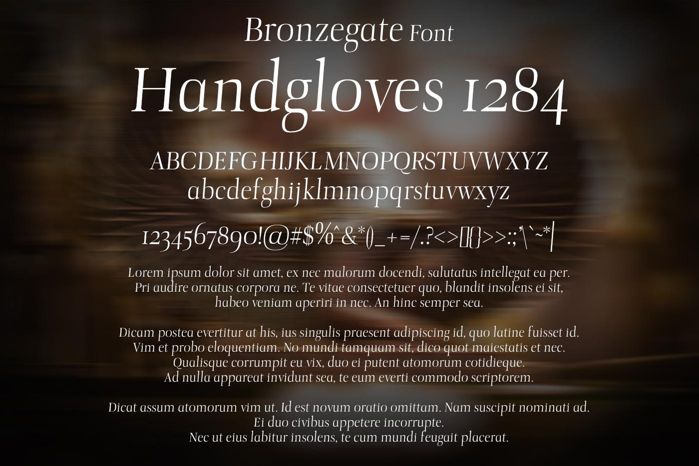 Bronzegate Font example image 2