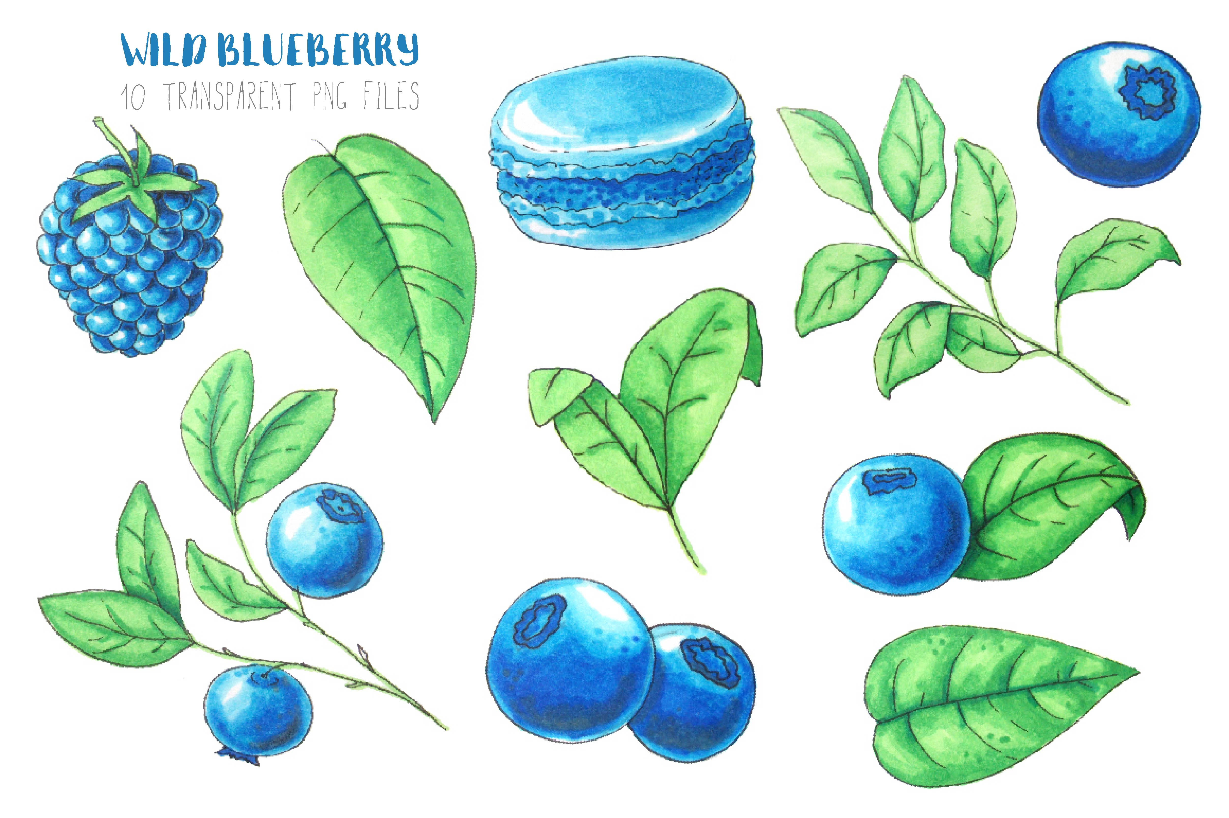 Wild Blueberry Font Duo example image 4