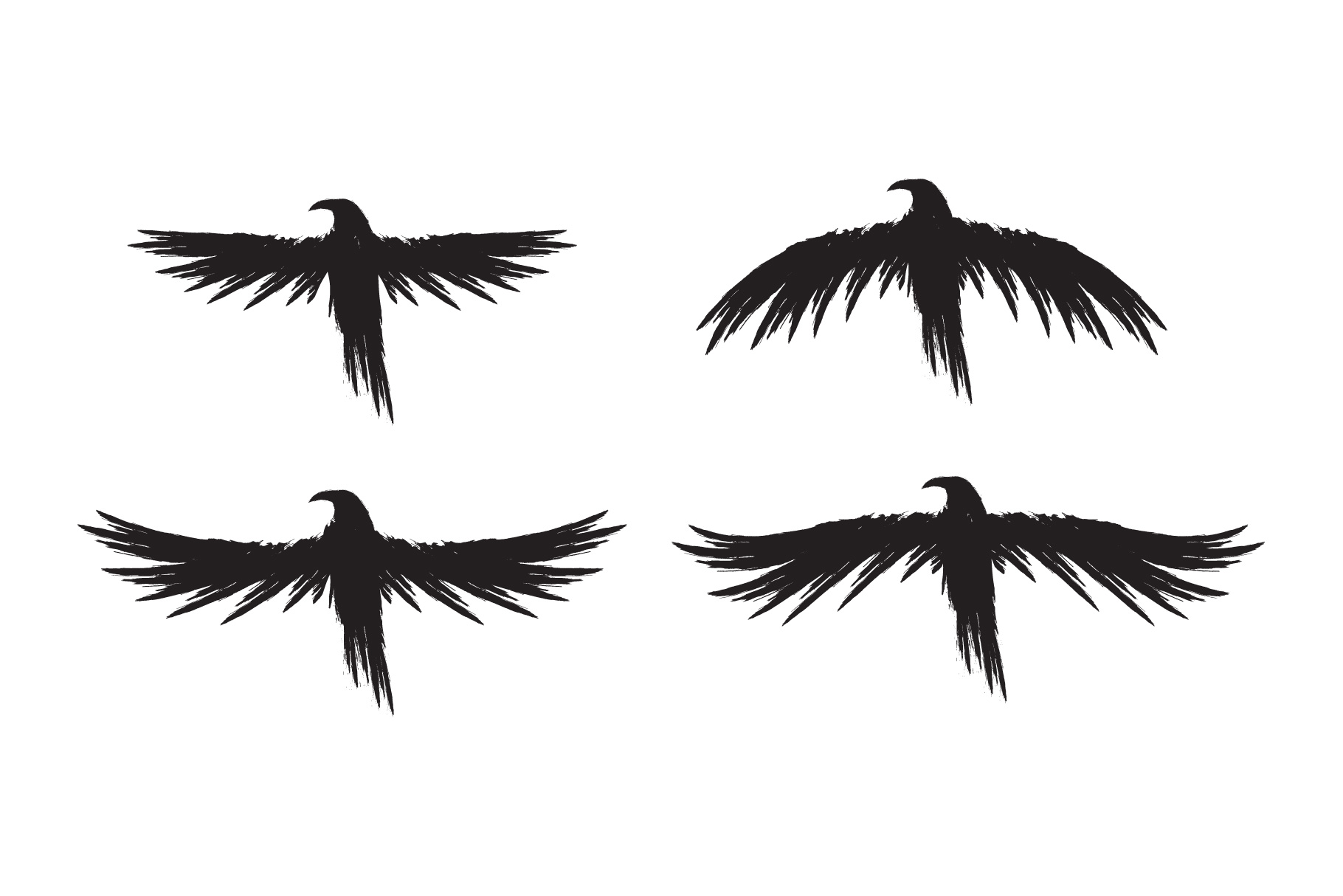 Black raven crow body and wings. example image 2