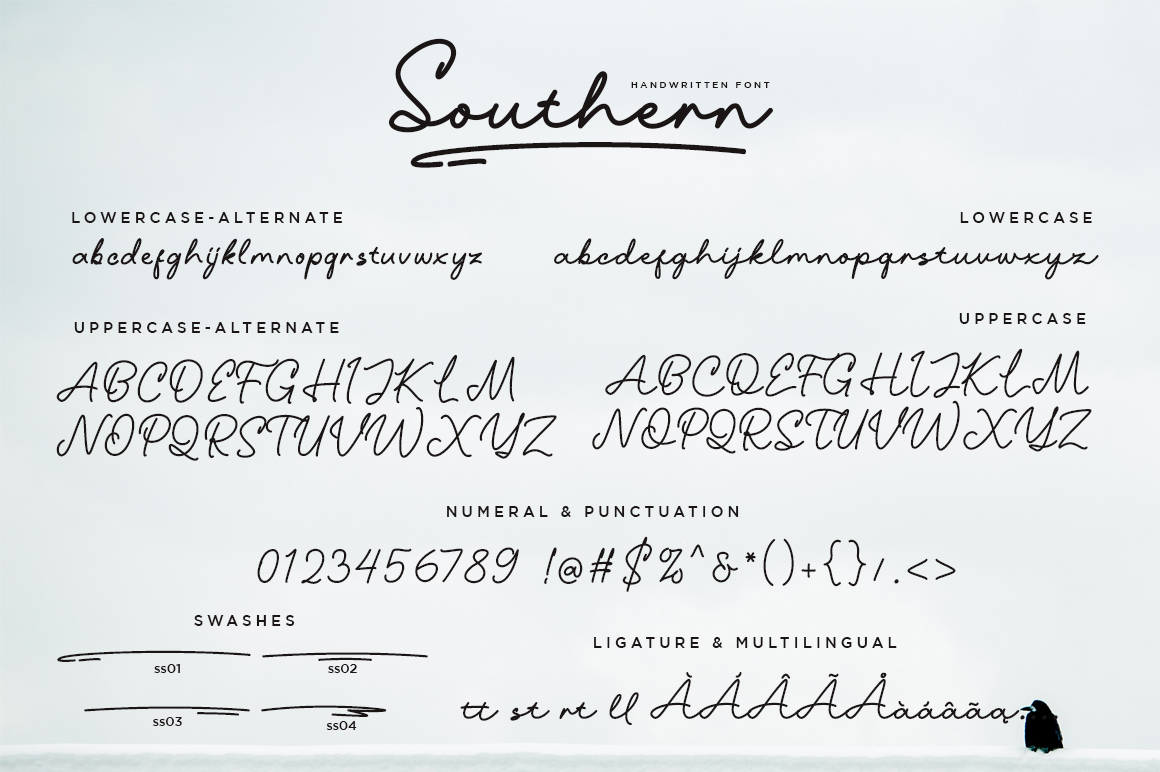 Southern Handwriting Font example image 9