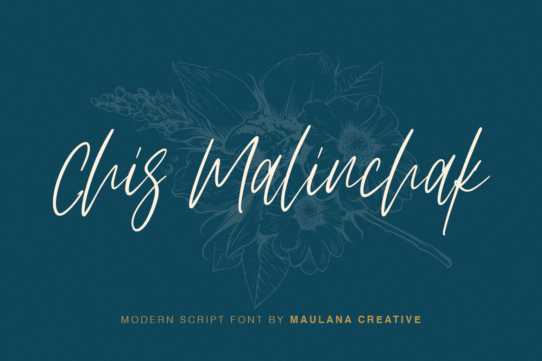 Arttifac - Modern Script Font example image 3
