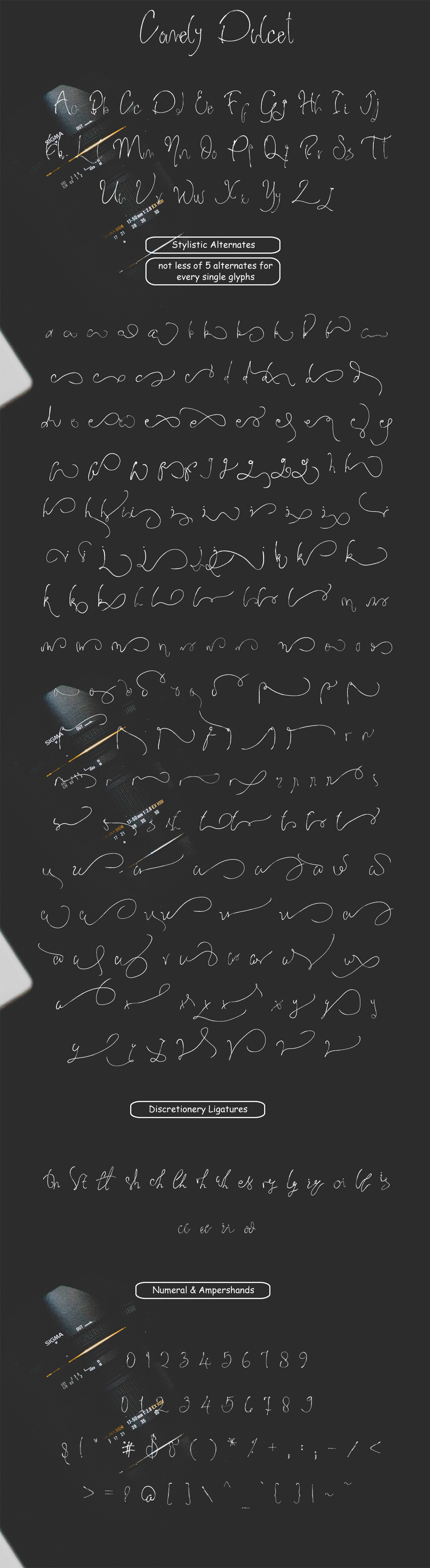 Comely Dulcet Brush Script example image 6