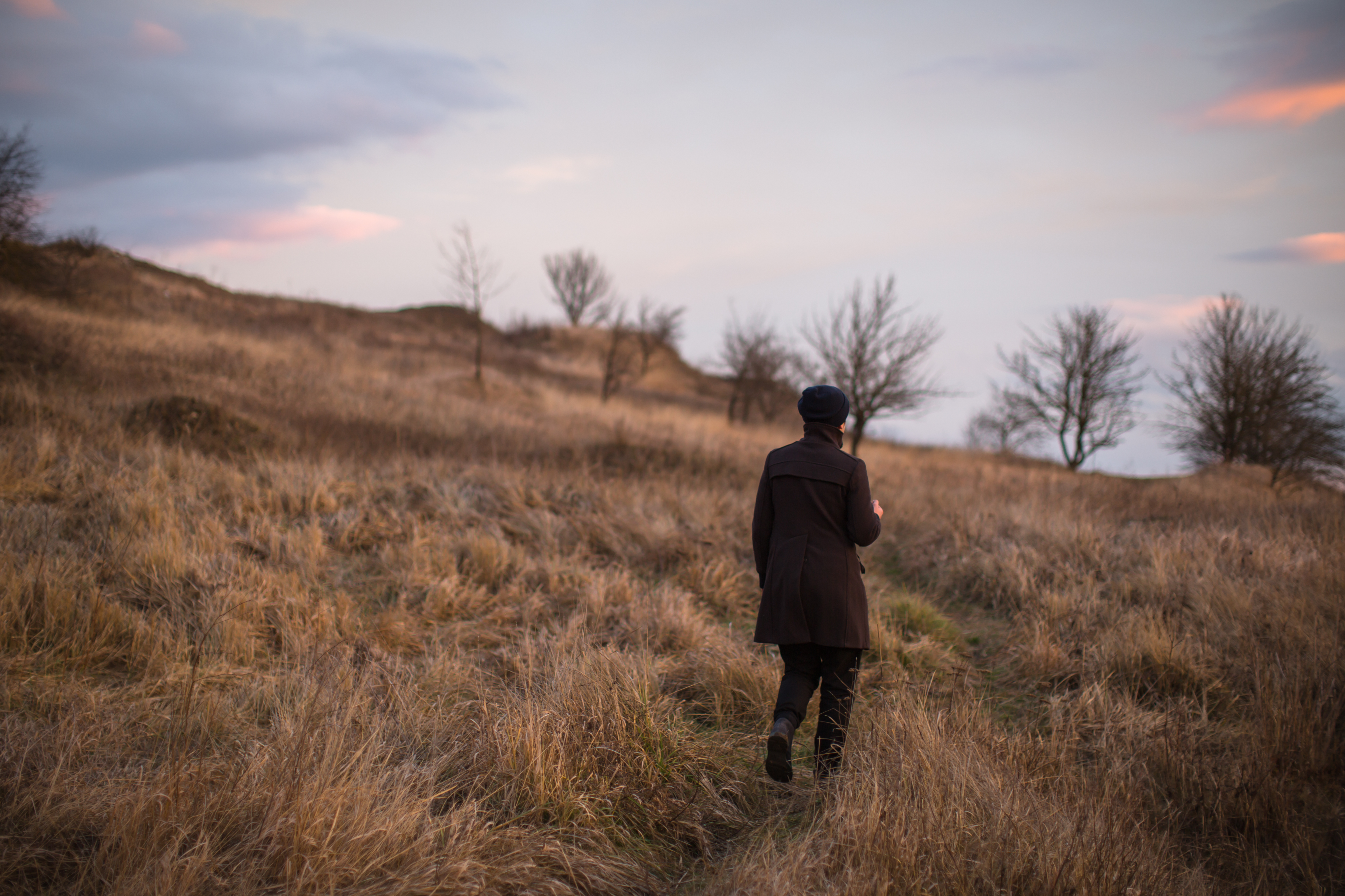 Man walking in the field with trees during sunset example image 1