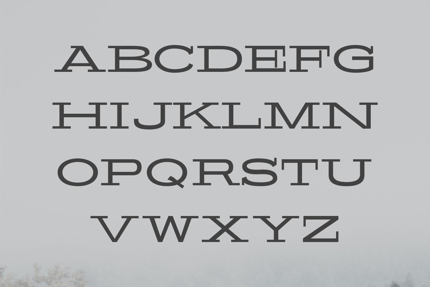 Banquo Serif Font Family example image 2