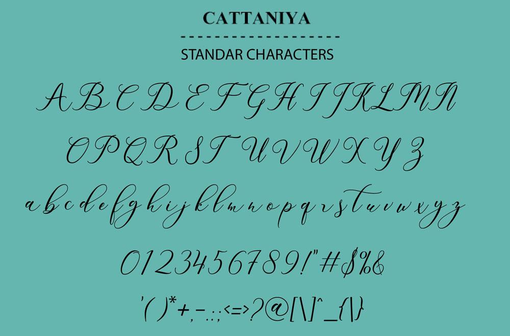 Cattaniya example image 2