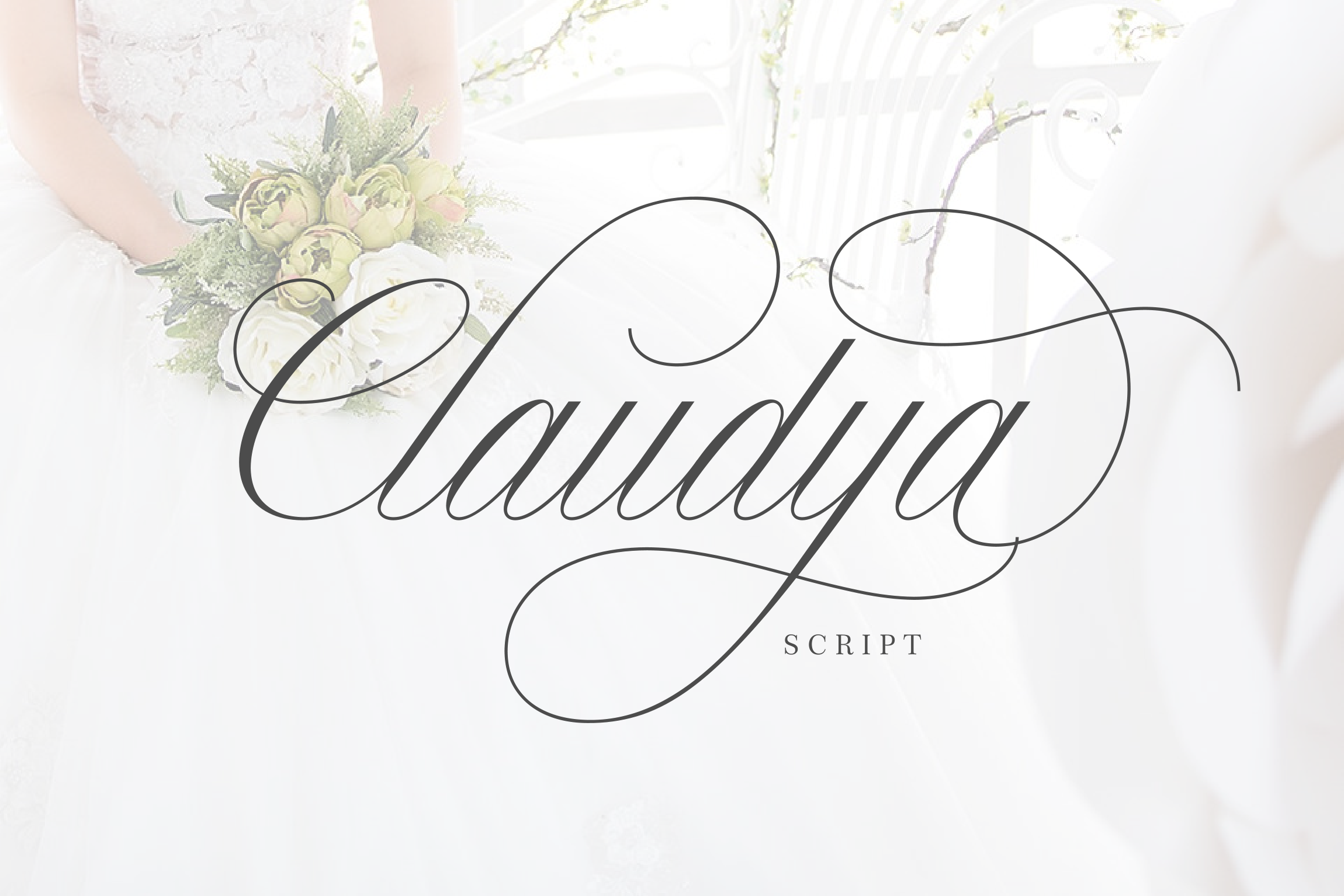 Claudya Script example image 7