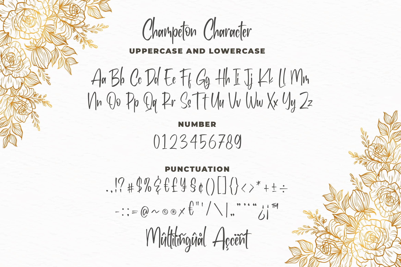 Champeton - Playful Script Font example image 5