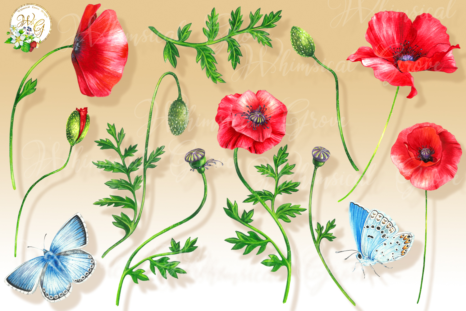 Scarlet Poppy set 18 watercolor handpainted clipart, floral, example image 2