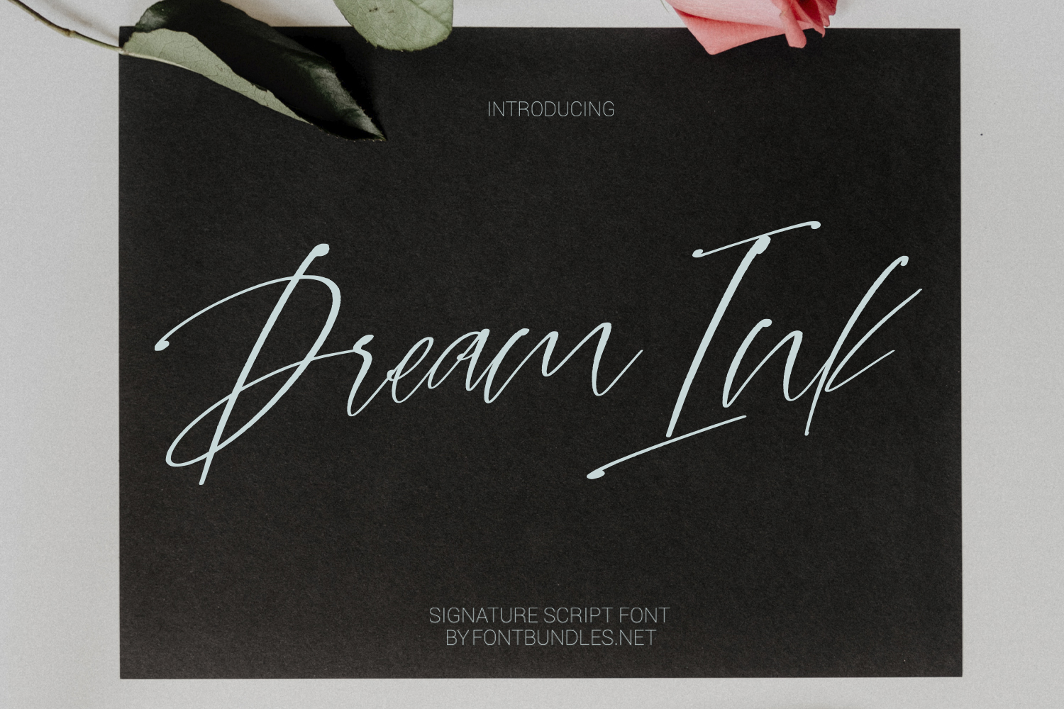 Dream Ink. Textured Script Font example image 1