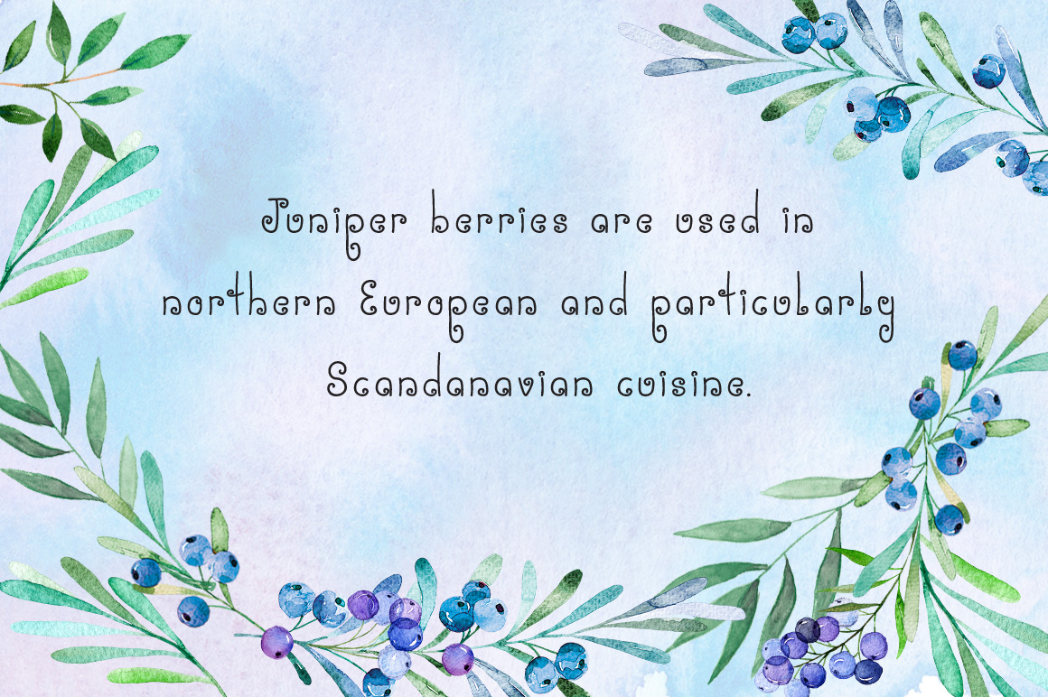 Miss Juniper - A Whimsical Font example image 6