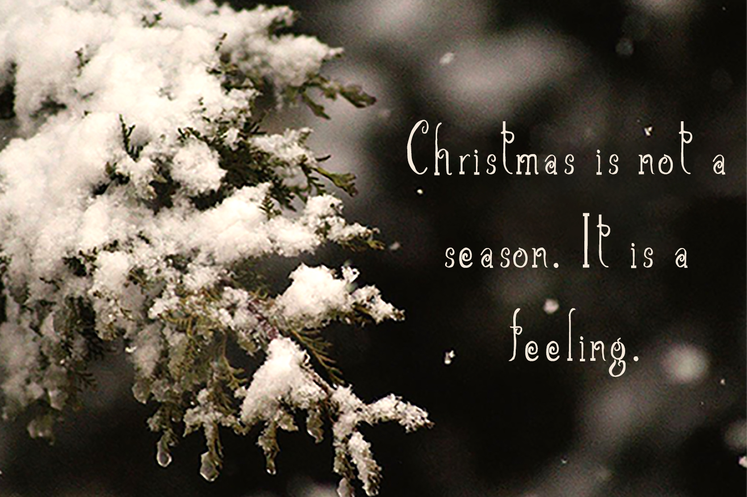 Christmas Script Font example image 6