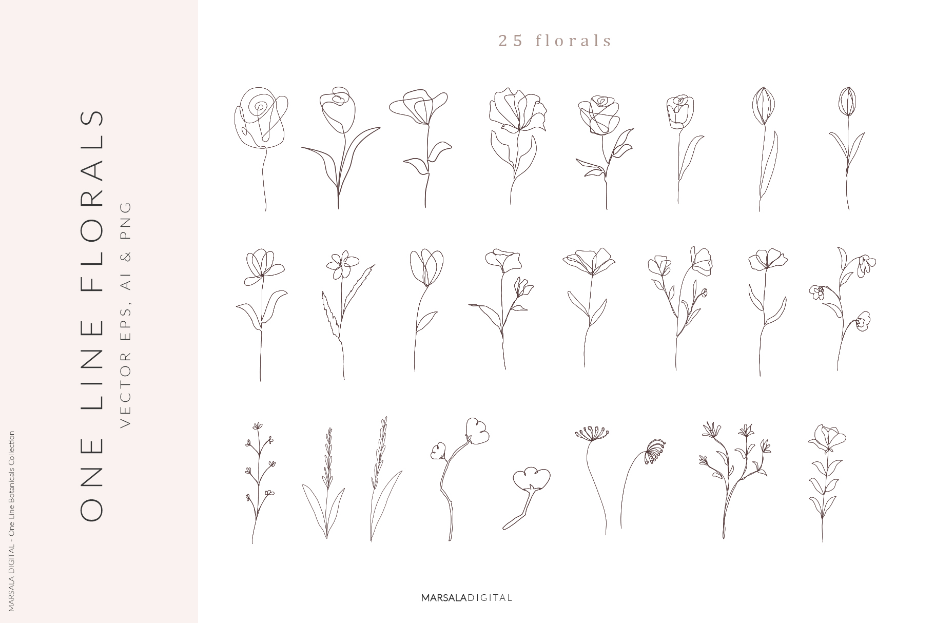 One Line Botanical Drawings Line Art Graphics example image 3