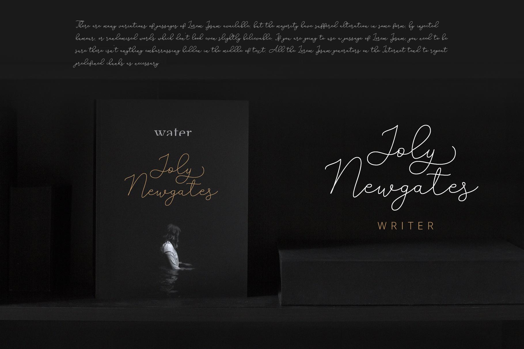 Adelya - Elegant Signature Font example image 7