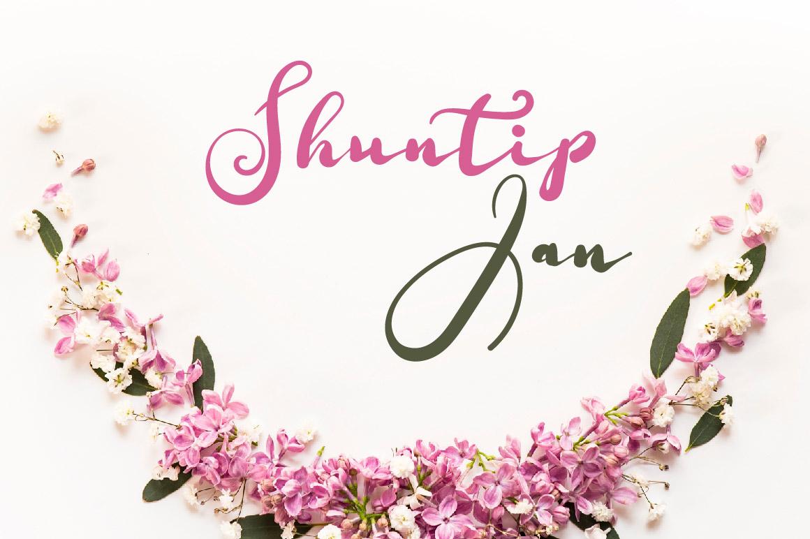Shuntip Jan Script Font example image 1