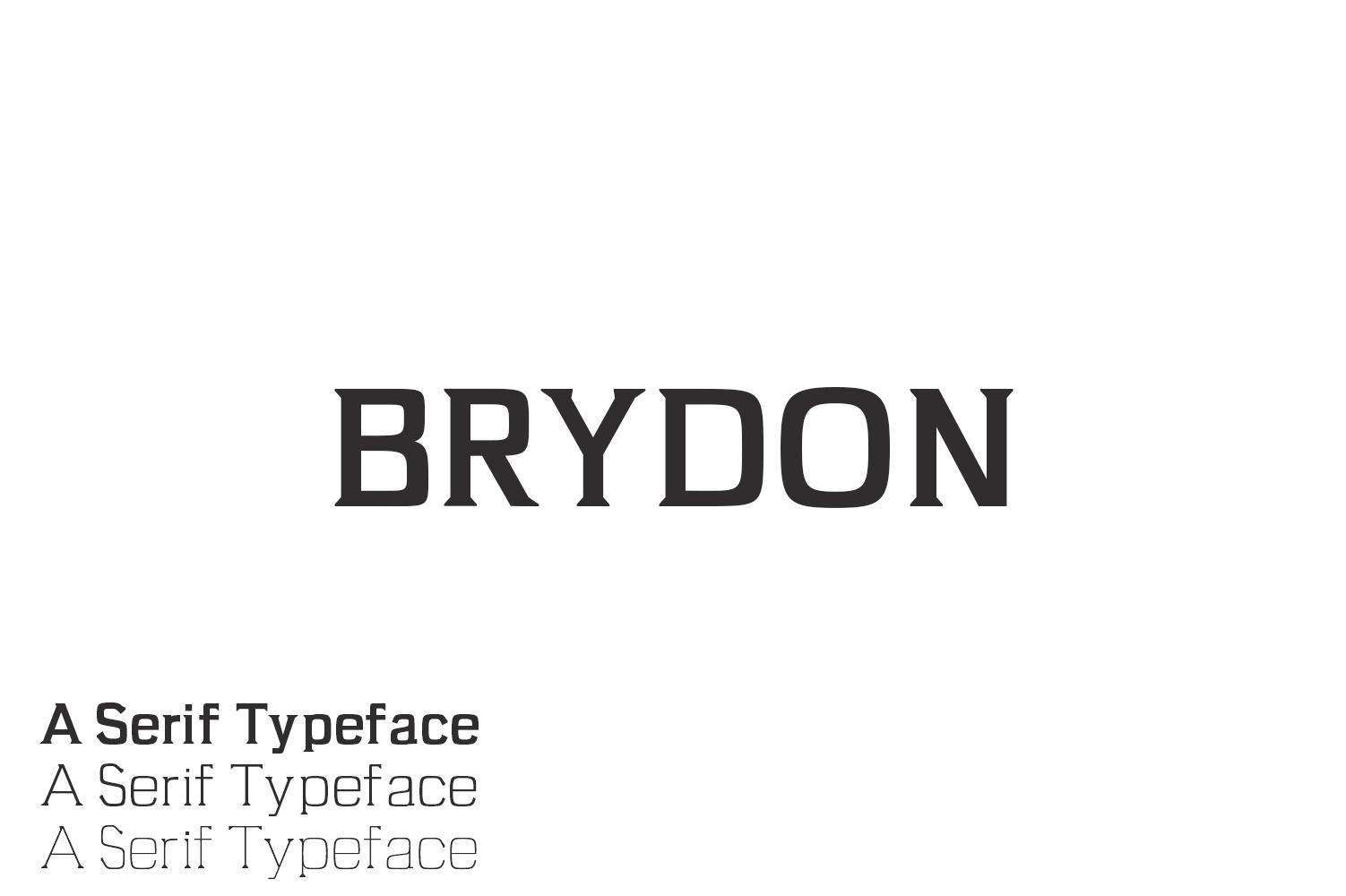 Brydon Serif Typeface example image 1