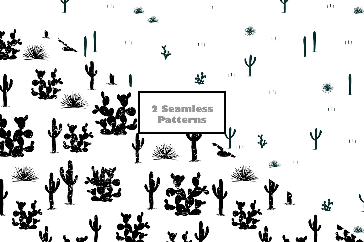 Cacti World. Big Vector Collection example image 5