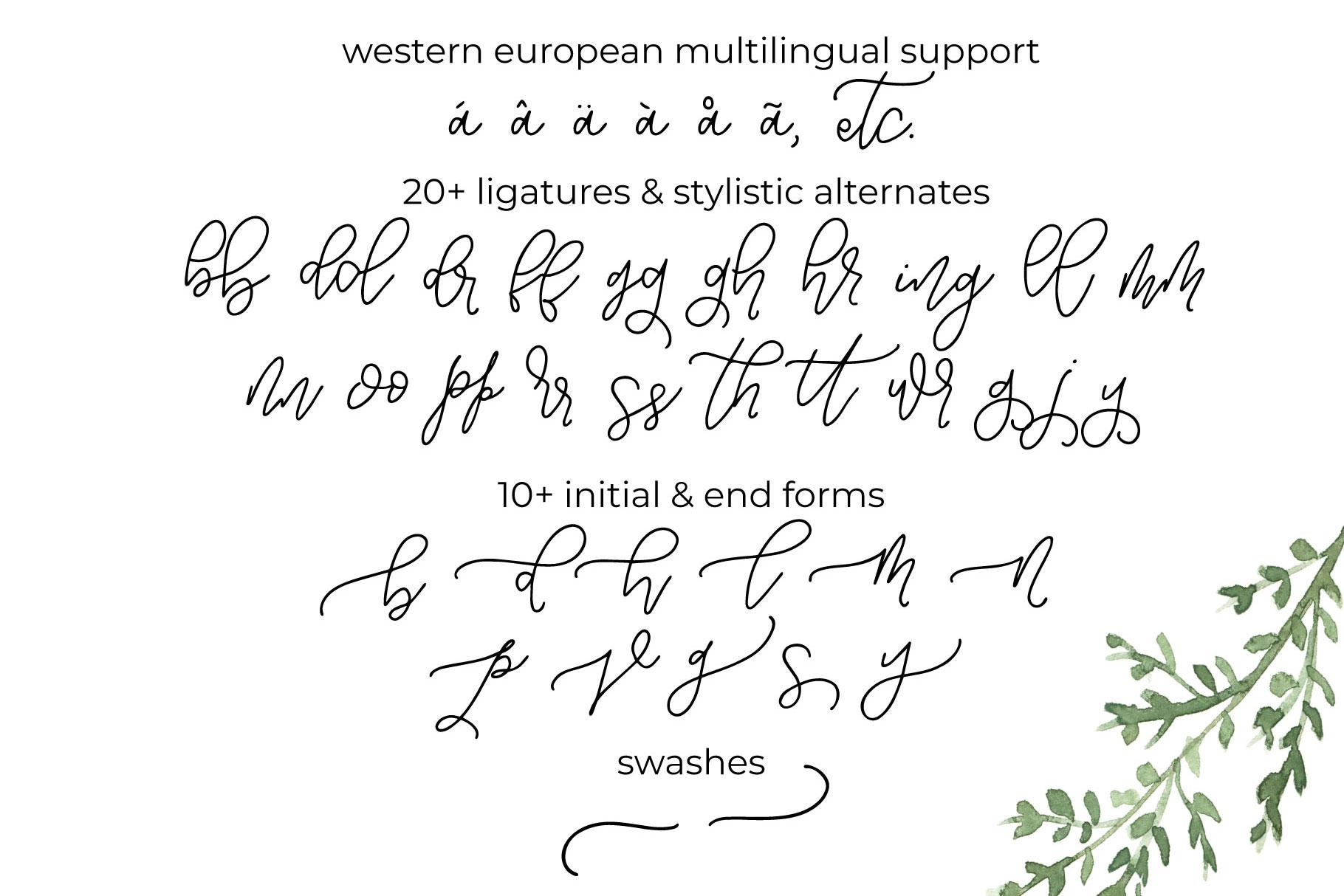 Notebook Script example image 11