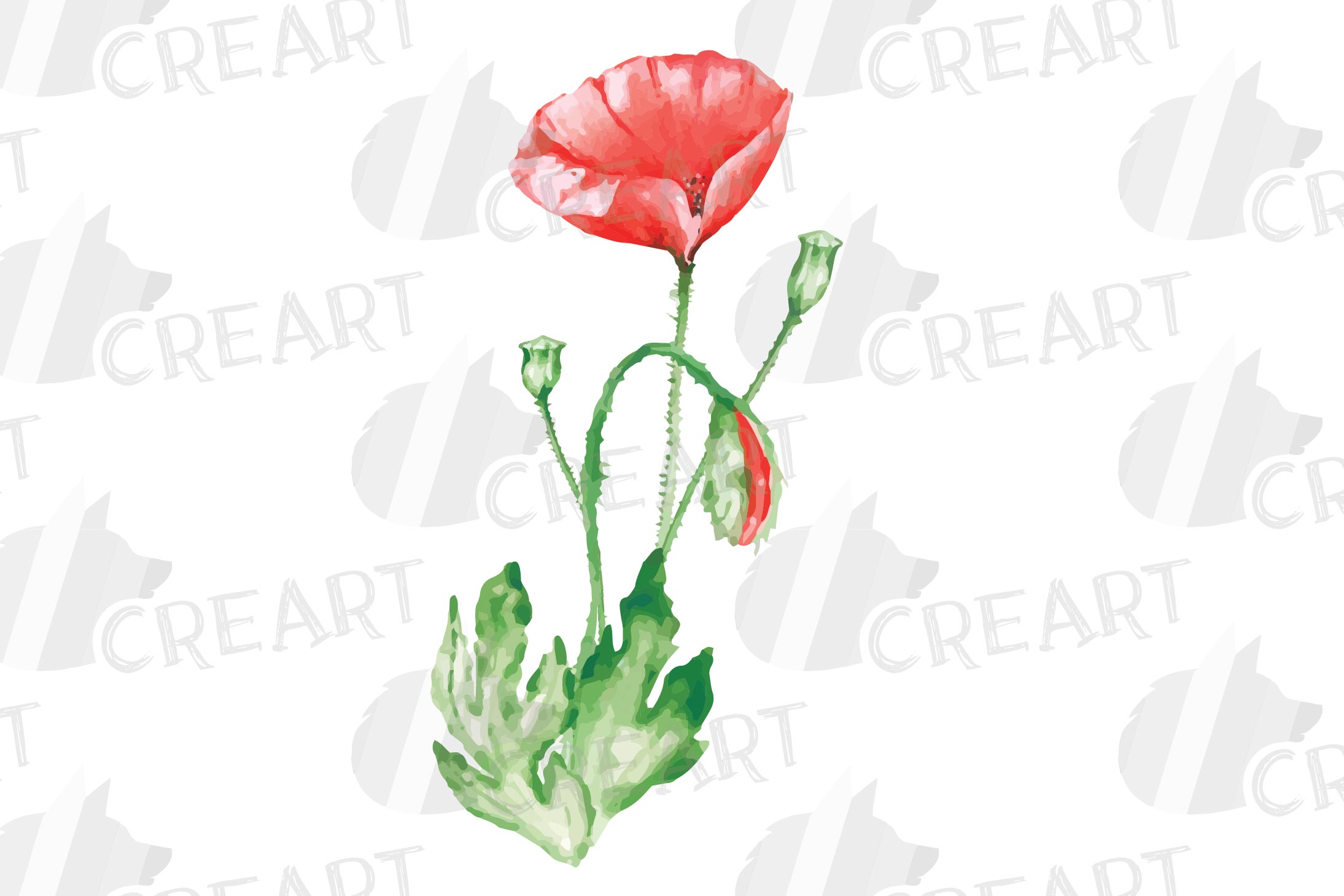 Watercolor red poppy flower and leaf decor clip art. Poppies example image 7