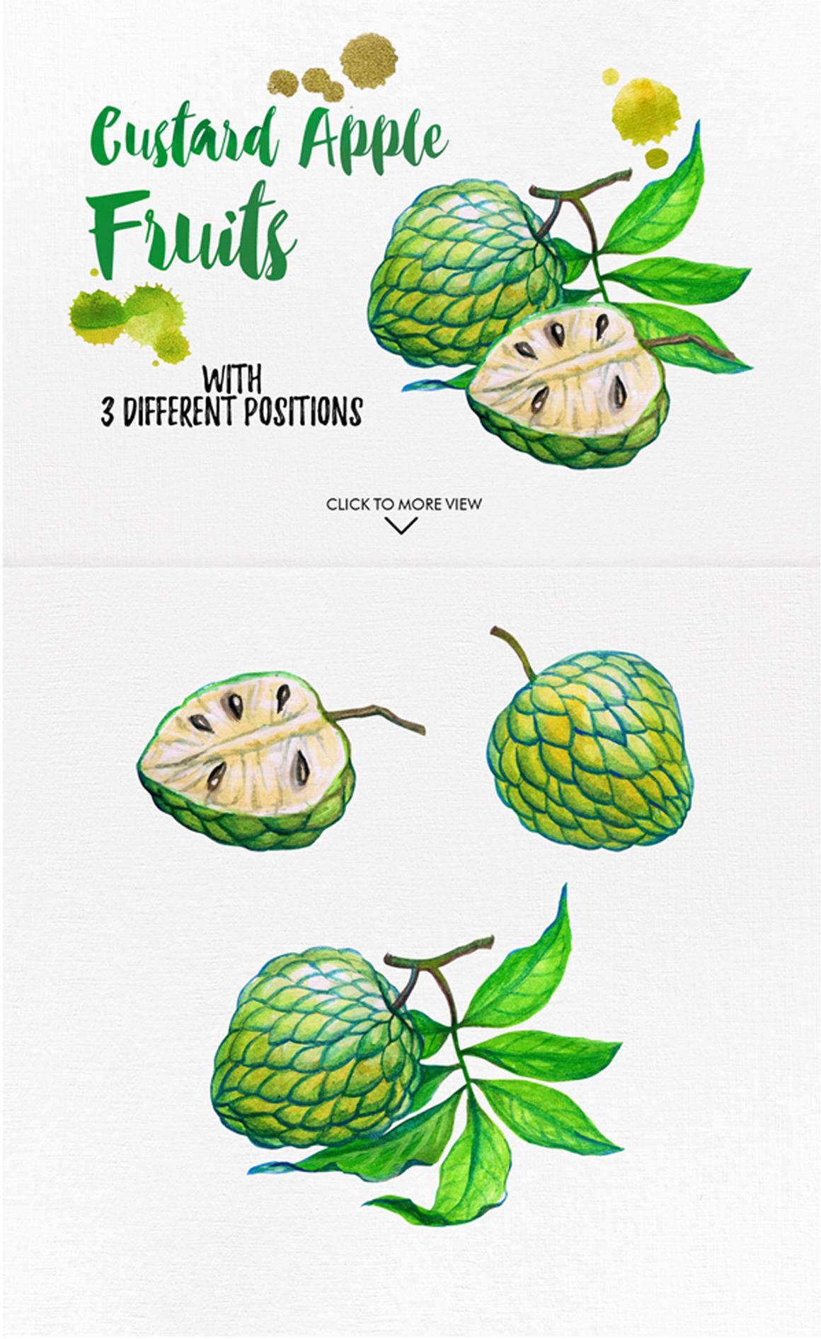 watercolor fruits vol. 6 example image 4