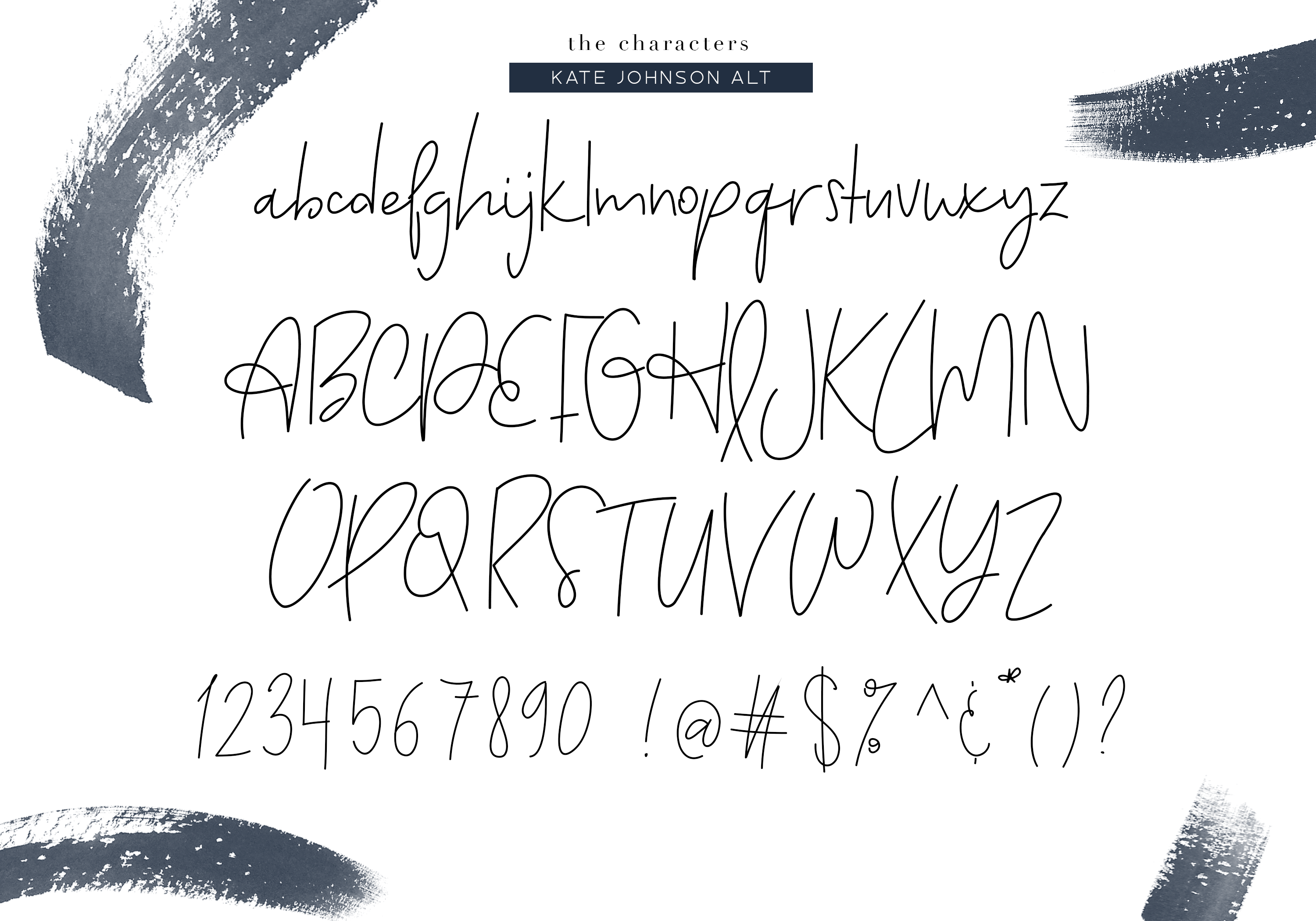 Kate Johnson - A Signature Script Font (with alternative) example image 9