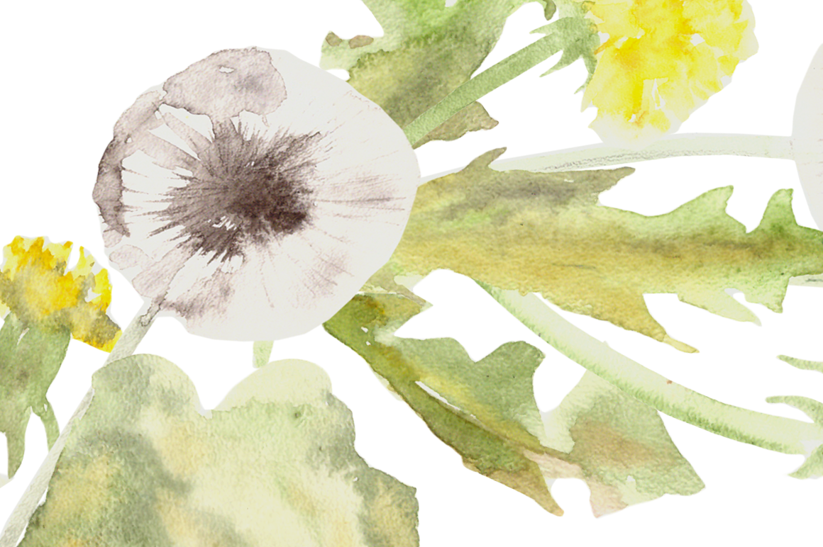 Watercolor Dandelion Clip Art, Wreath and Pattern example image 4