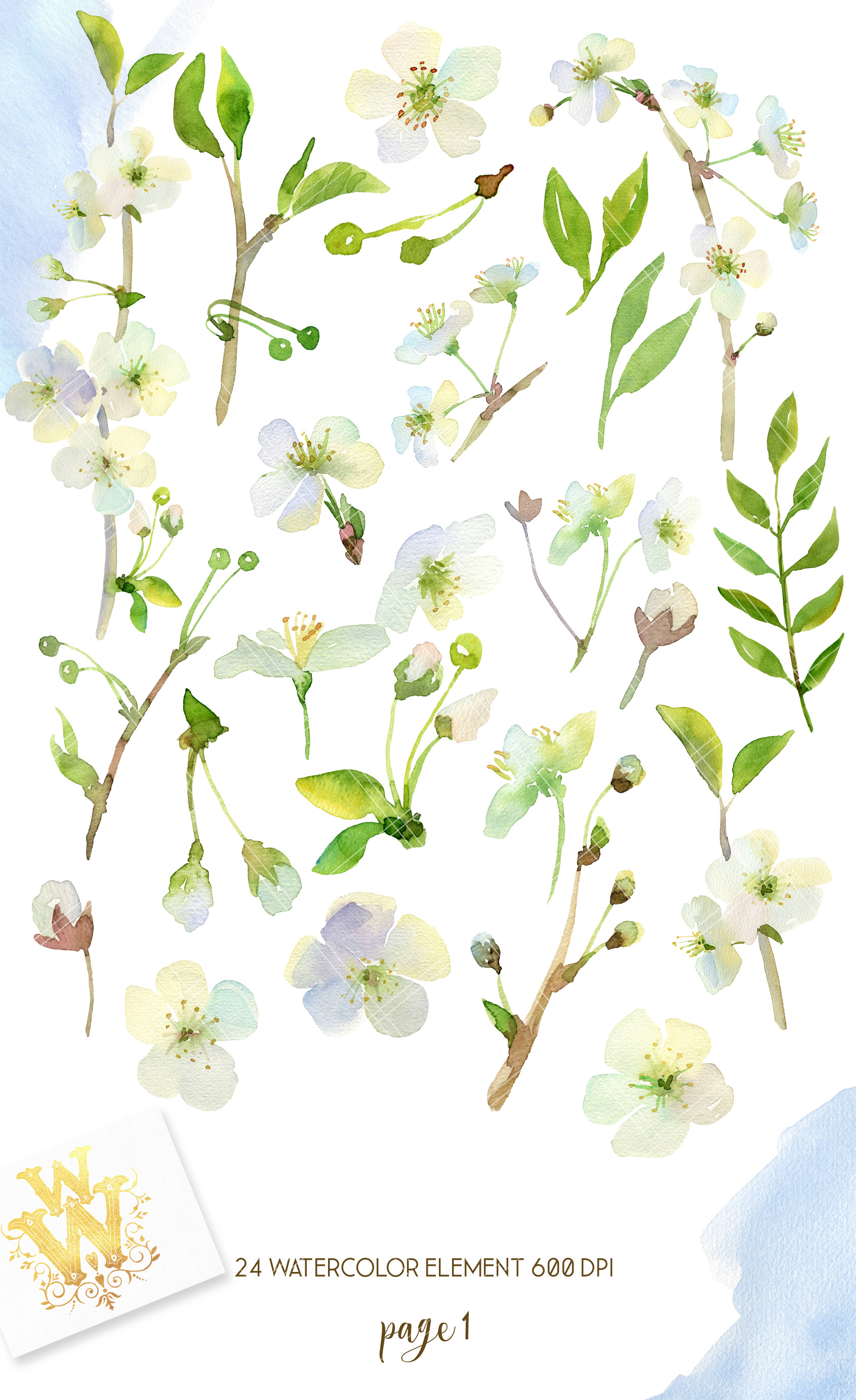 Watercolor white cherry blossom spring clipart example image 2