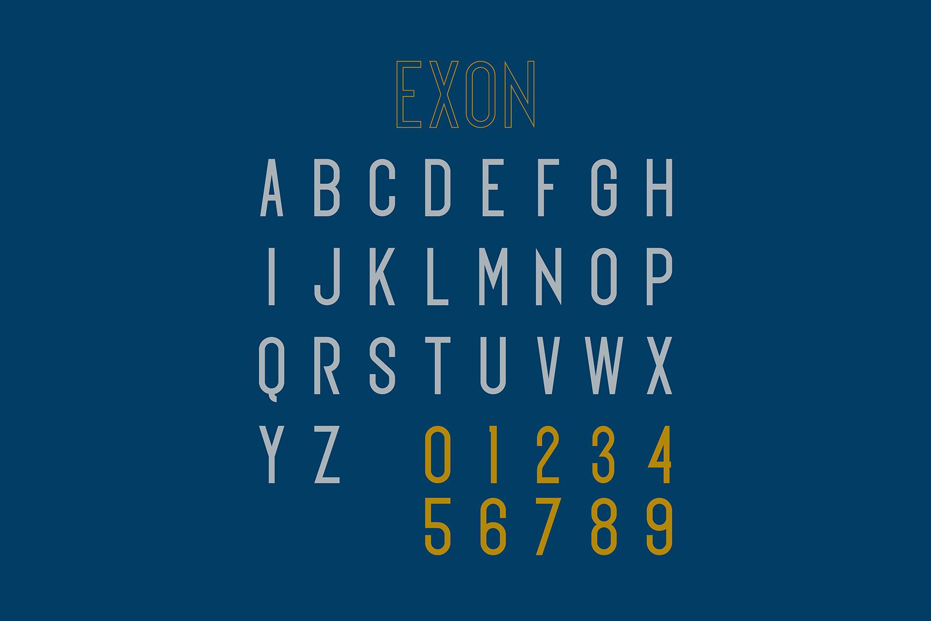 EXON example image 3