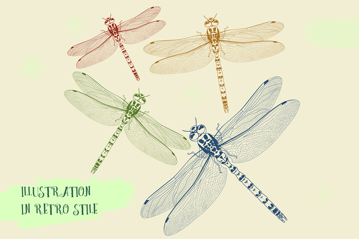 Dragonfly inspiration example image 4