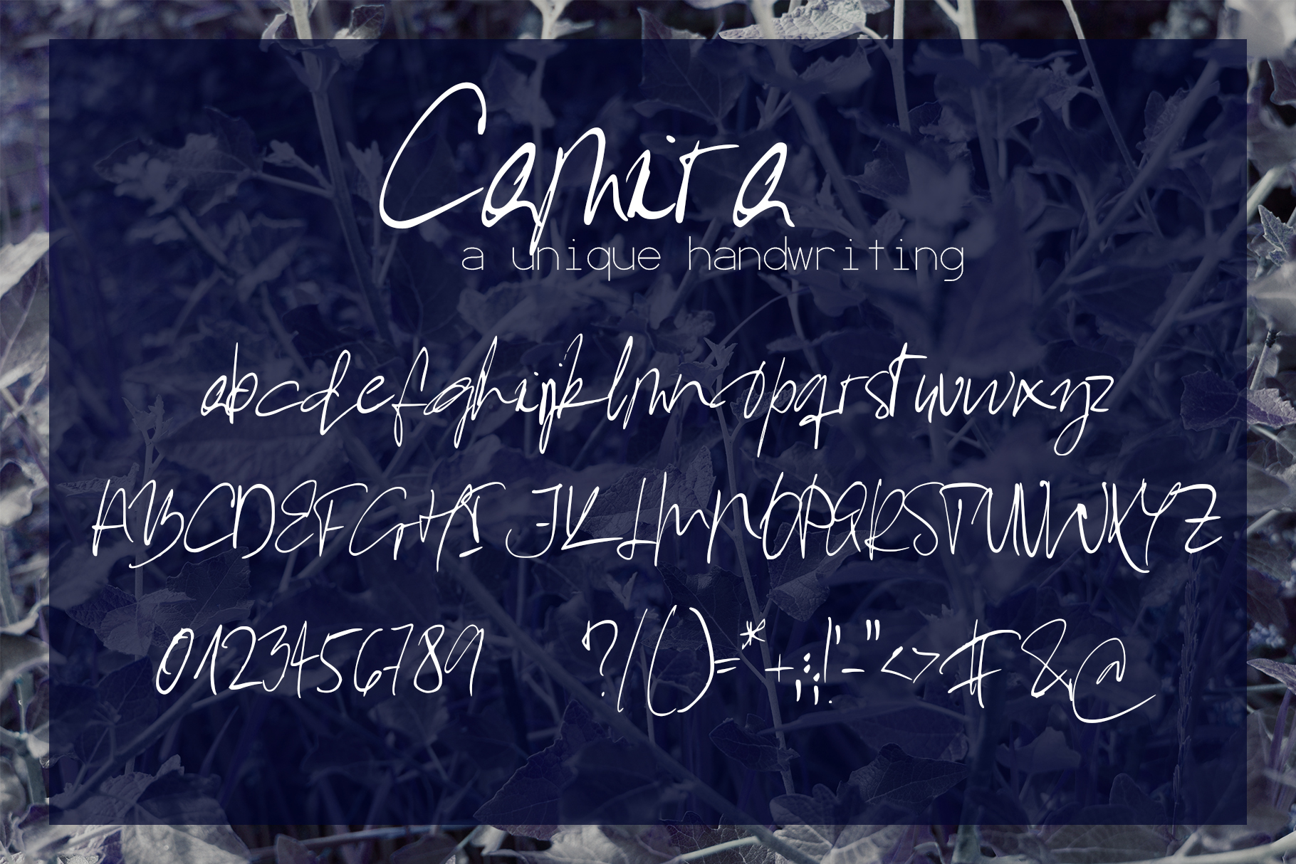 Camira Font example image 7