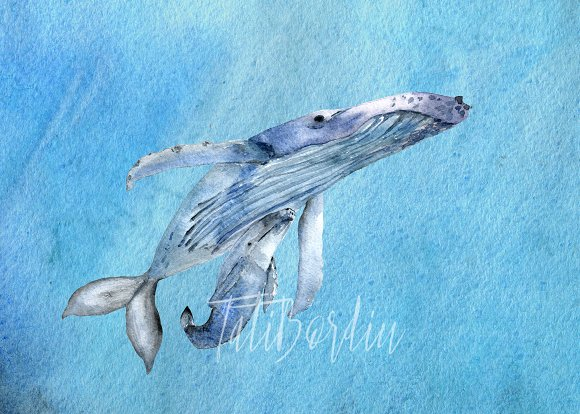 Watercolor Whales Clip Art + Print example image 1