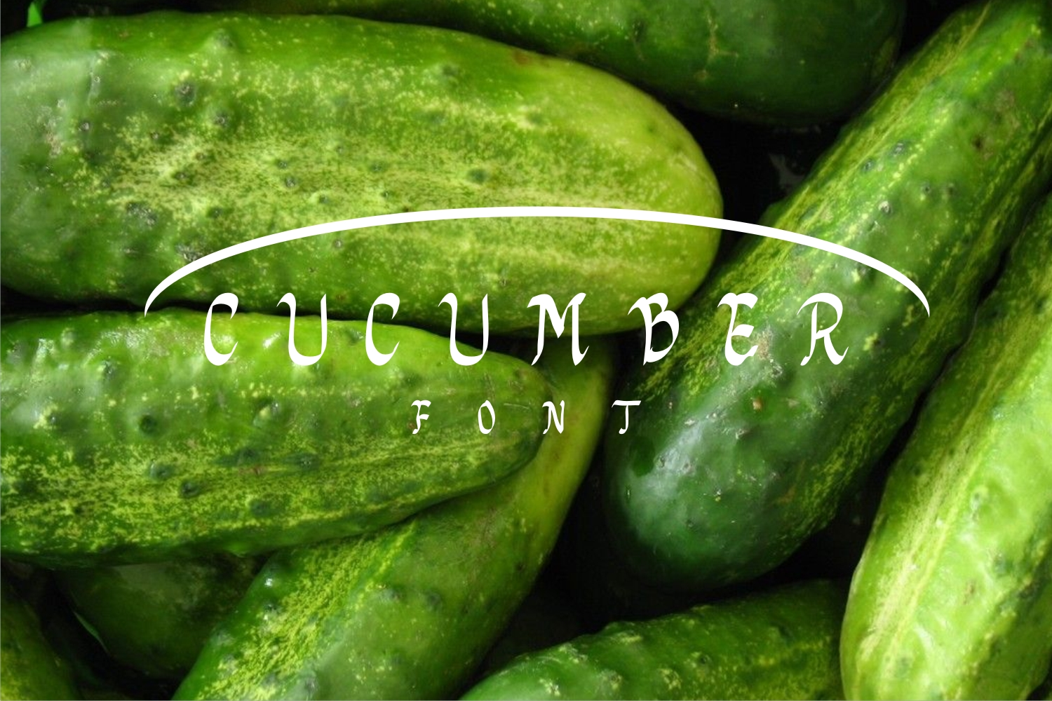 cucumberfont example image 1