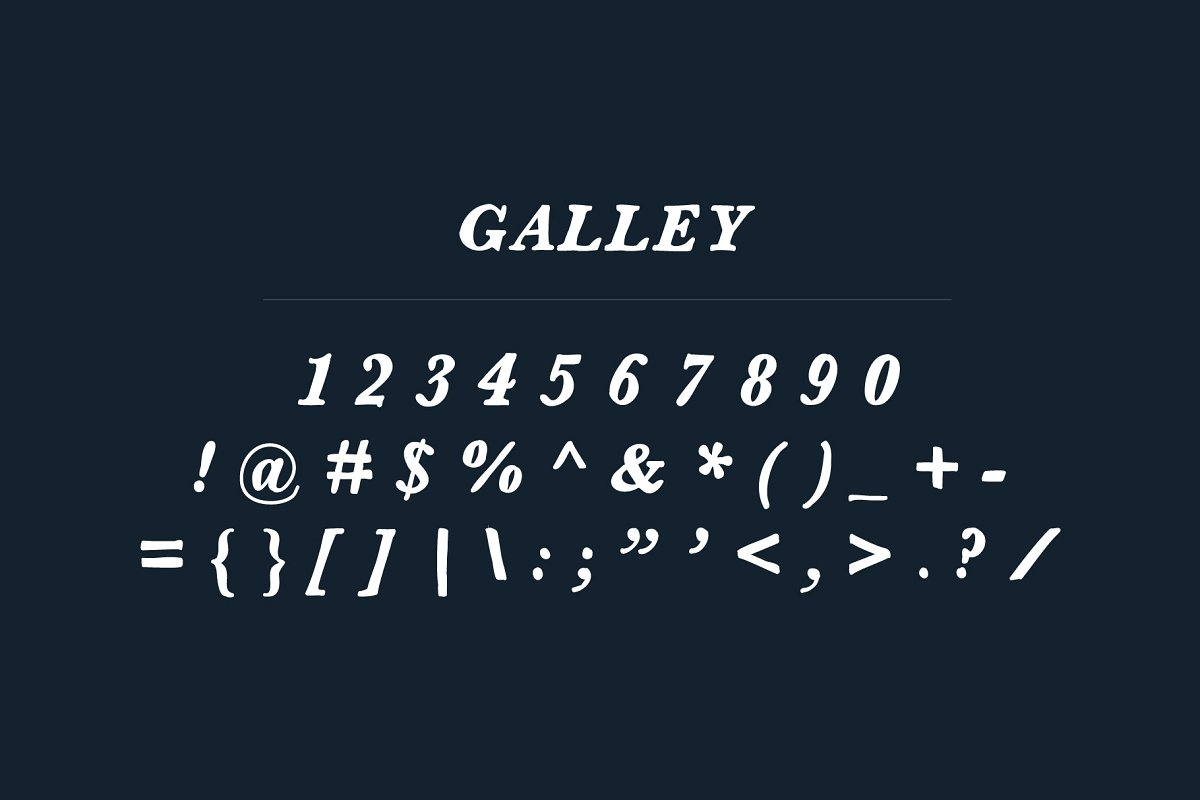 Galley | Serif Font example image 3