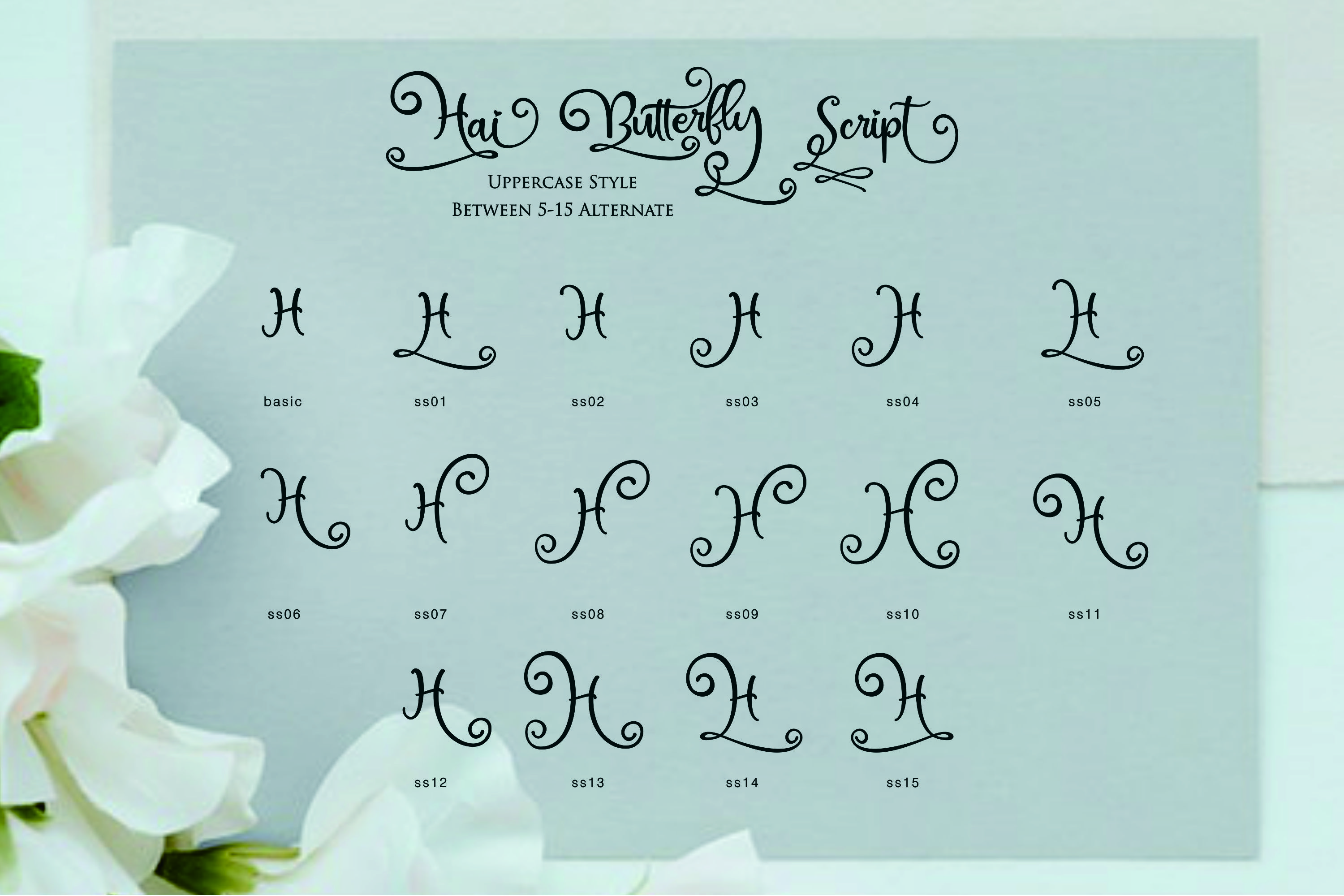 Hai Butterfly Font Duo and 500 Vectors example image 10