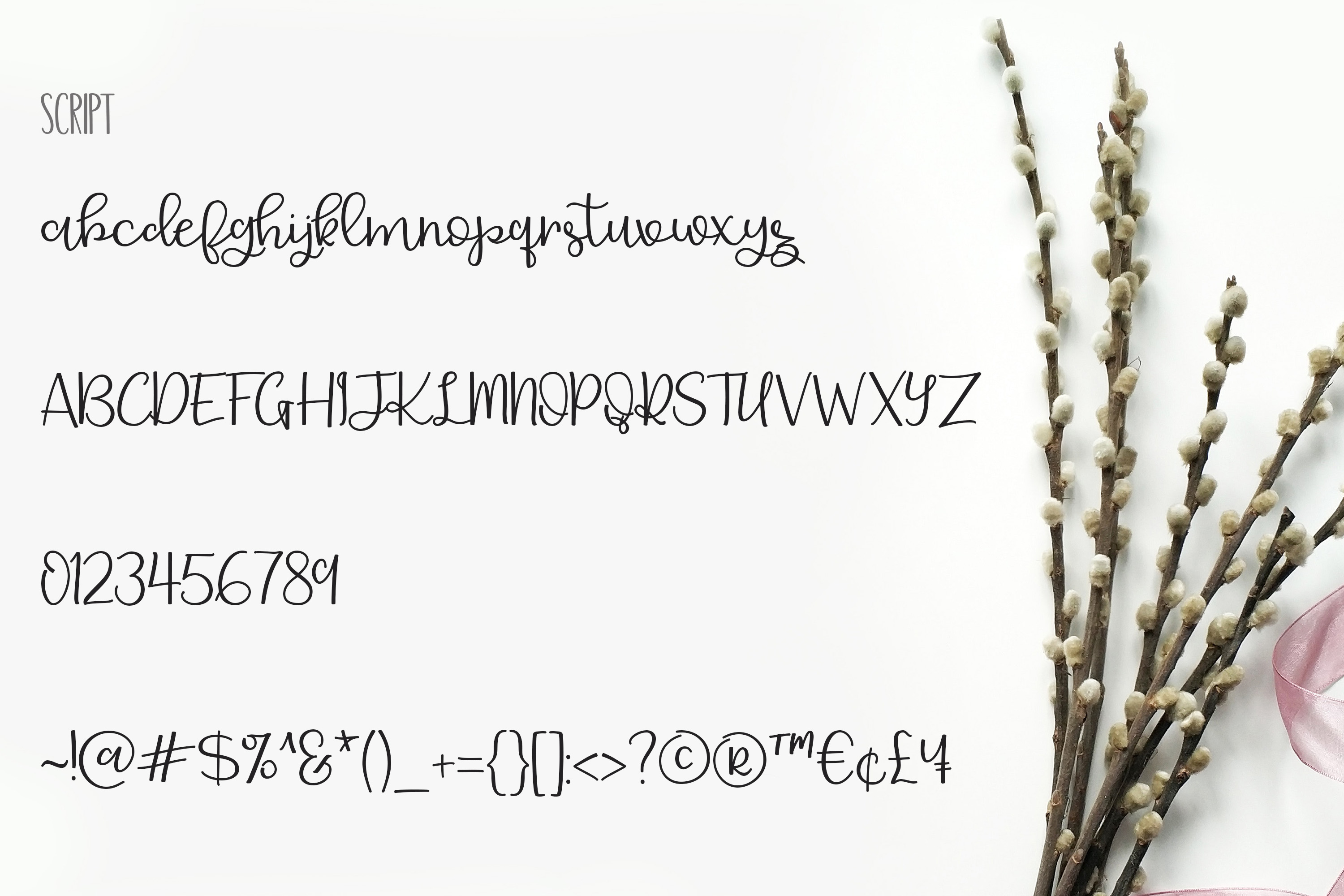 Delicate Romance Font Duo example image 6