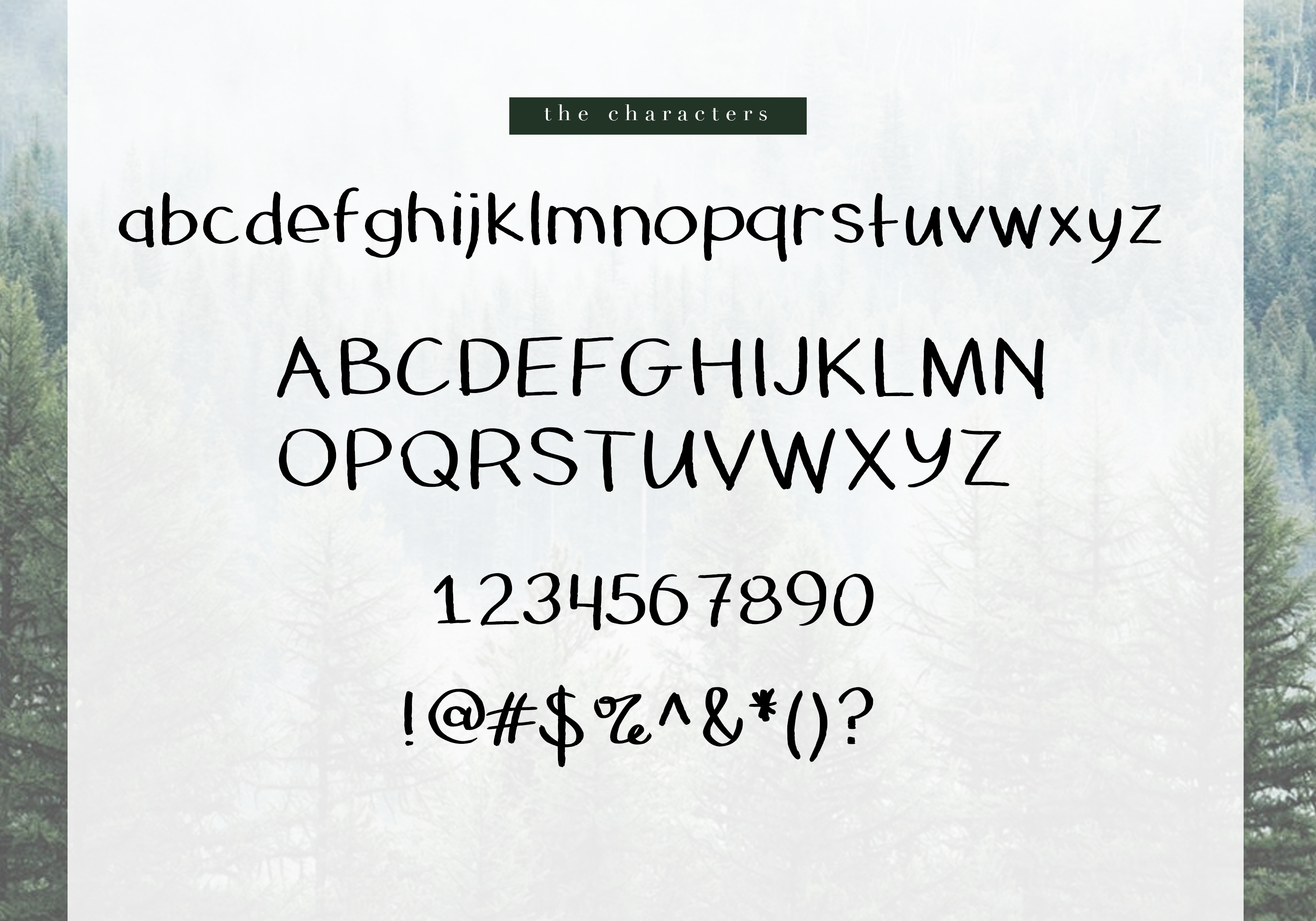 Pinecone - A Rough Handwritten Font example image 6