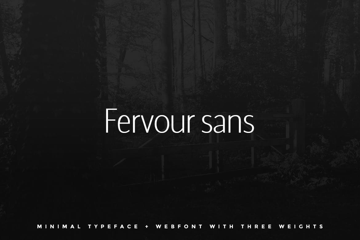 Fervour Sans Typeface  Web Fonts with 3 Weights example image 1