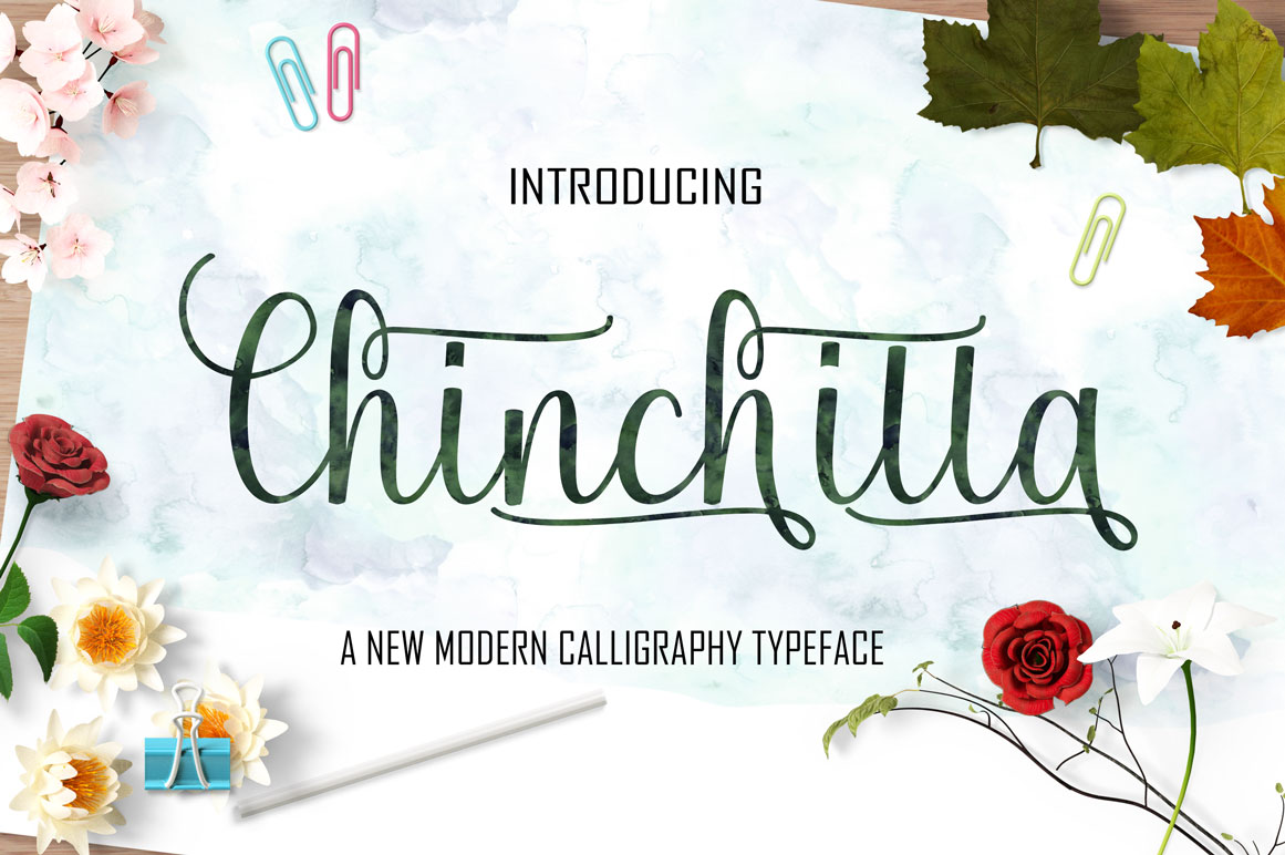 Calligraphy Font Bundles example image 5