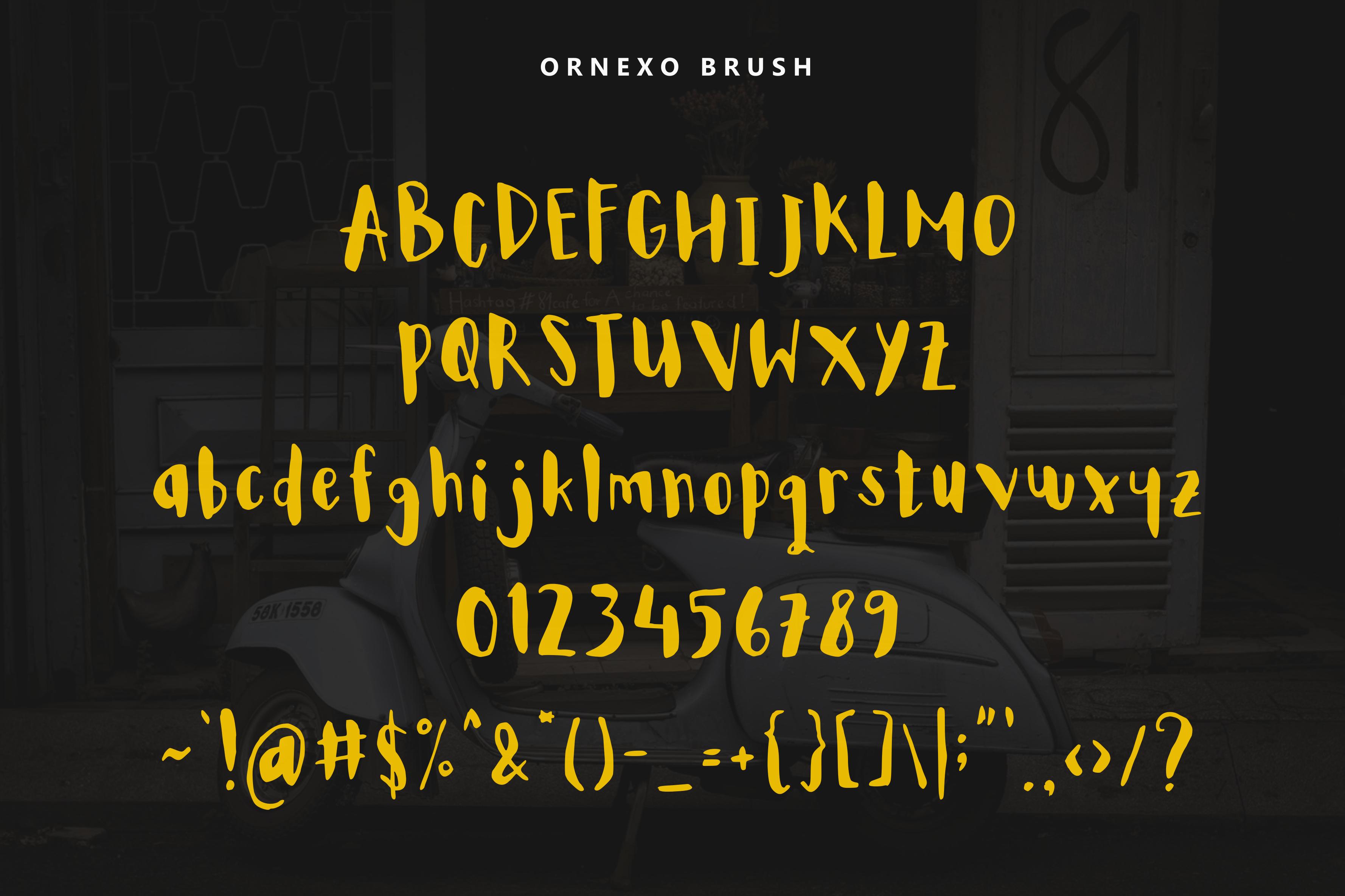 30% OFF! Ornexo + Extras + BIG Bonus example image 3
