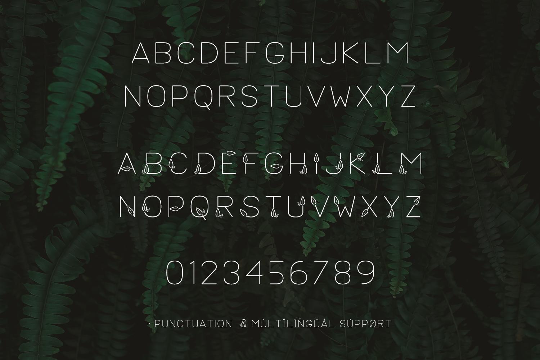 Lush Sans Typeface example image 3