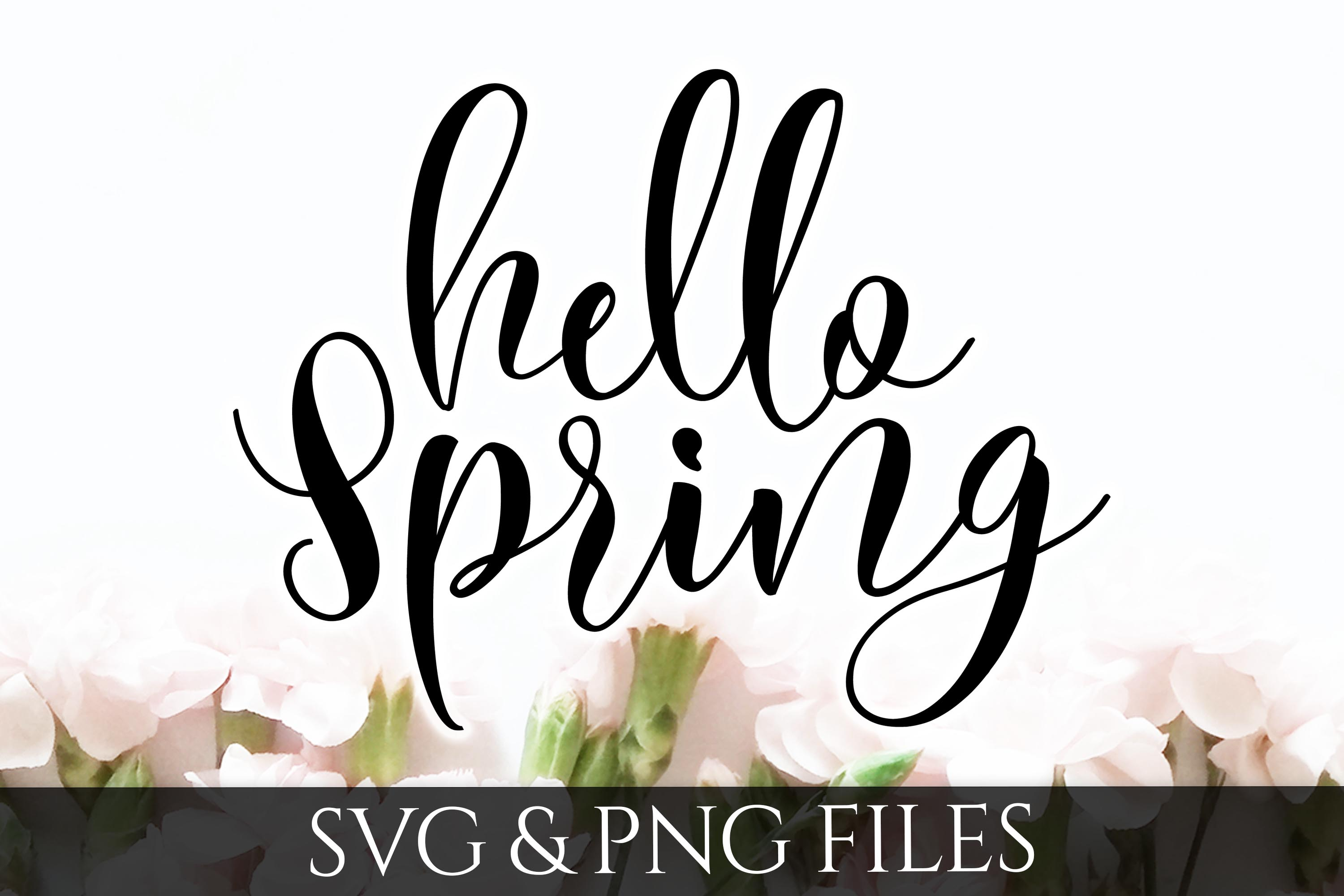Hello Spring SVG & PNG Files example image 1