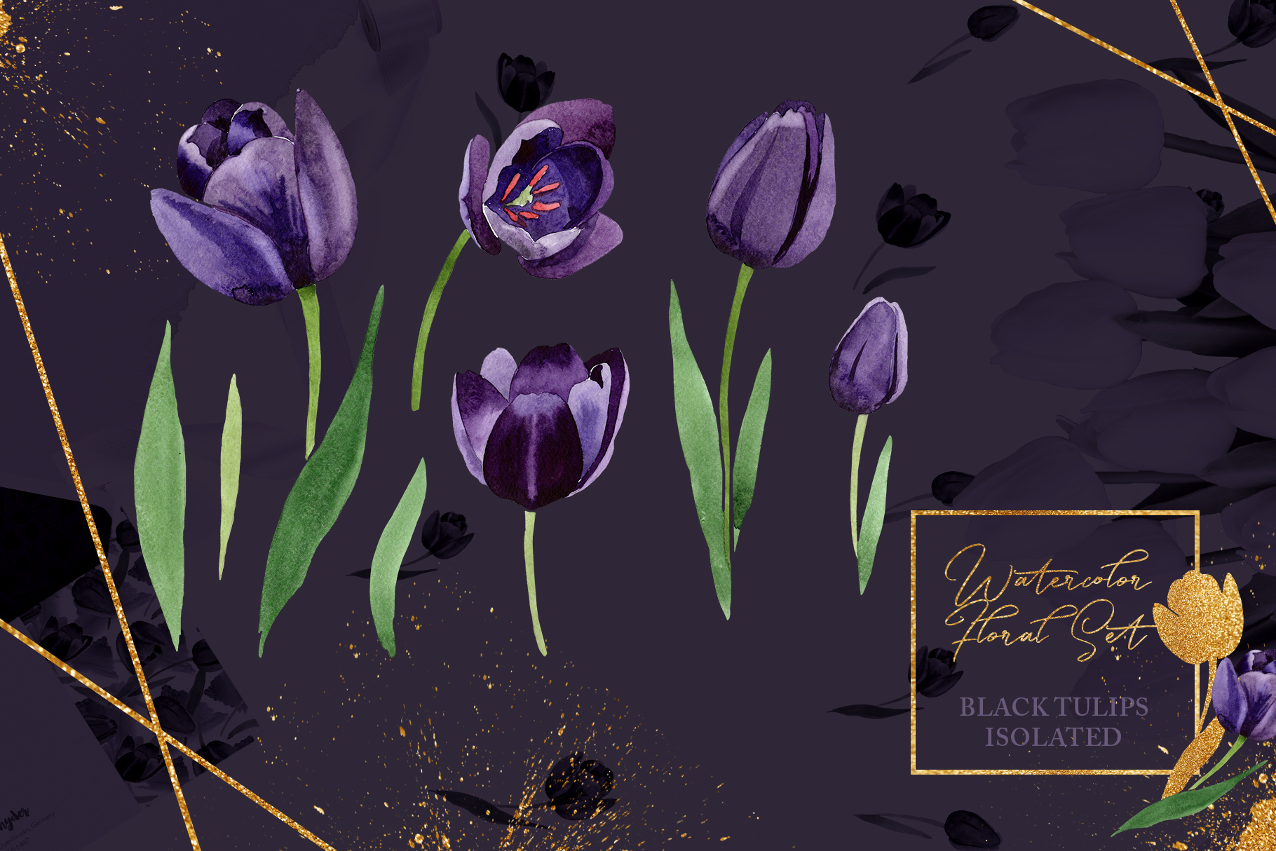 Wonderful black tulips PNG watercolor flower set example image 7